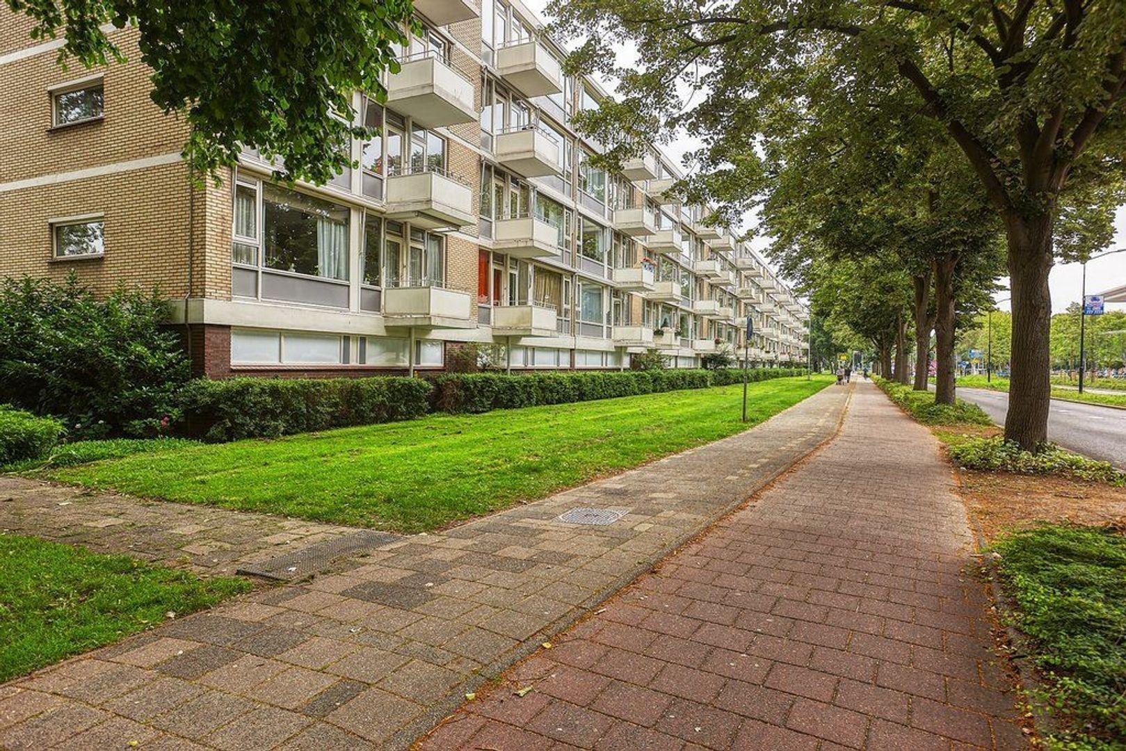 Schout Van Eijklaan, Leidschendam foto-23 blur
