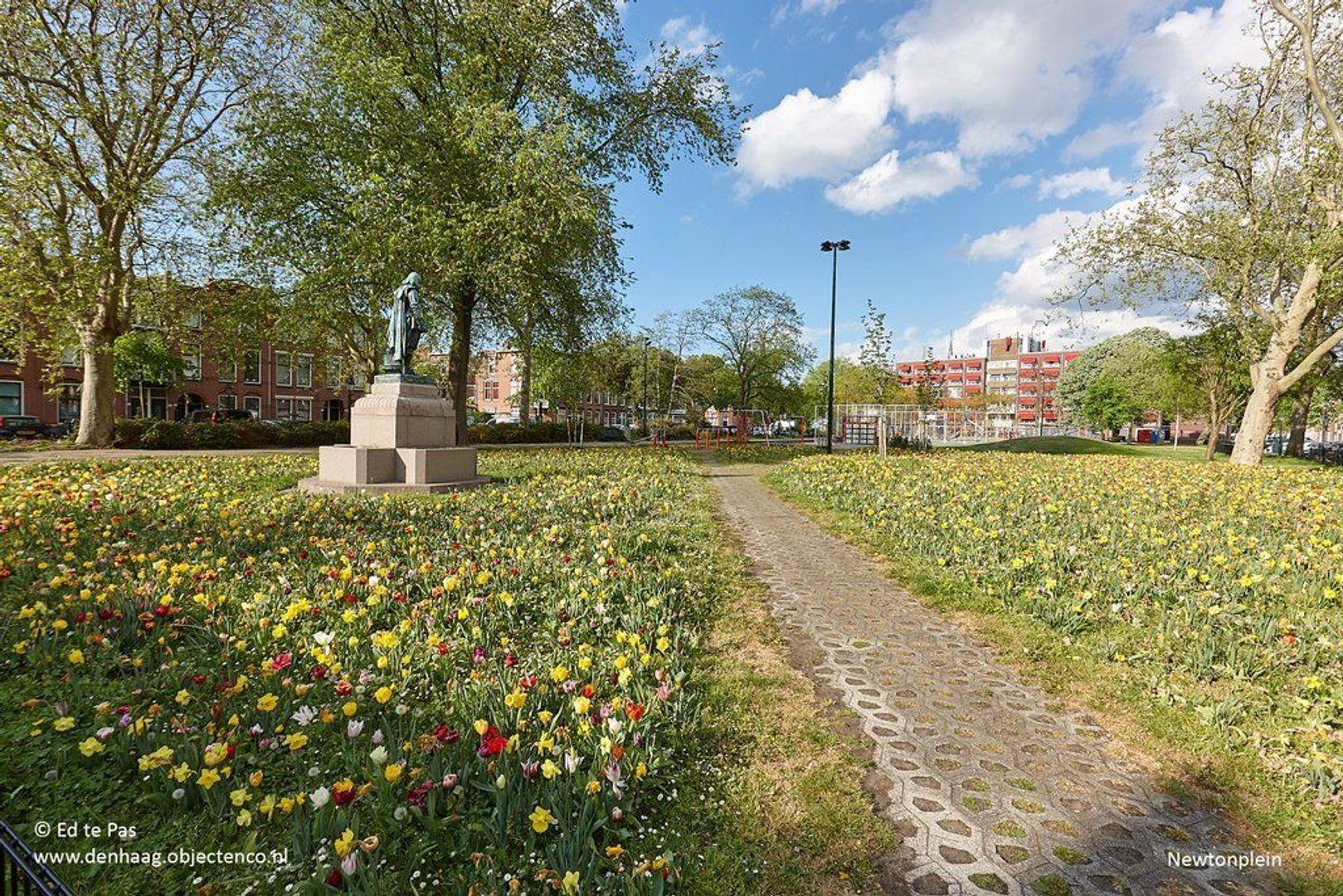 Kepplerstraat, Den Haag foto-28 blur