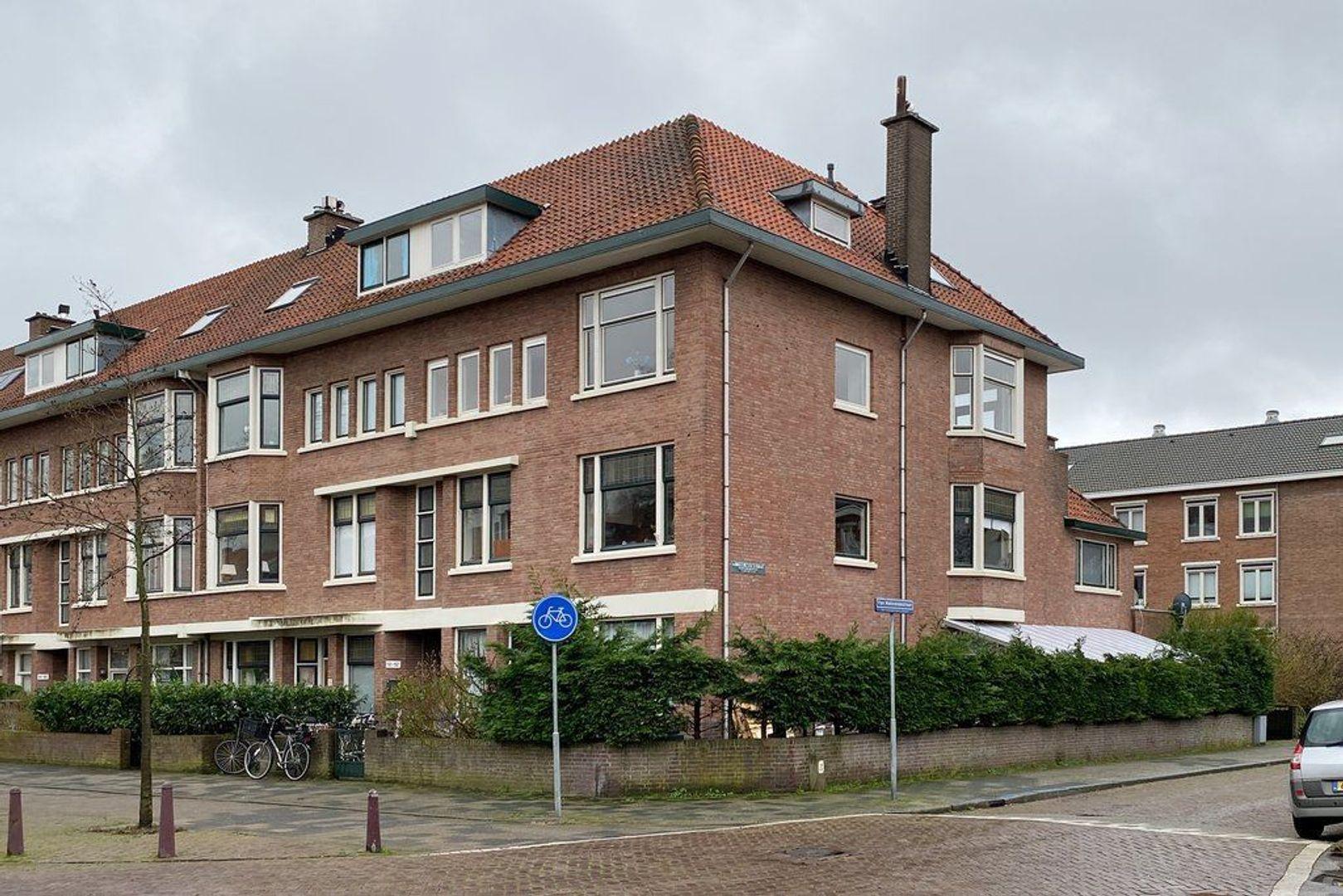 Koningin Wilhelminalaan, Voorburg foto-48 blur