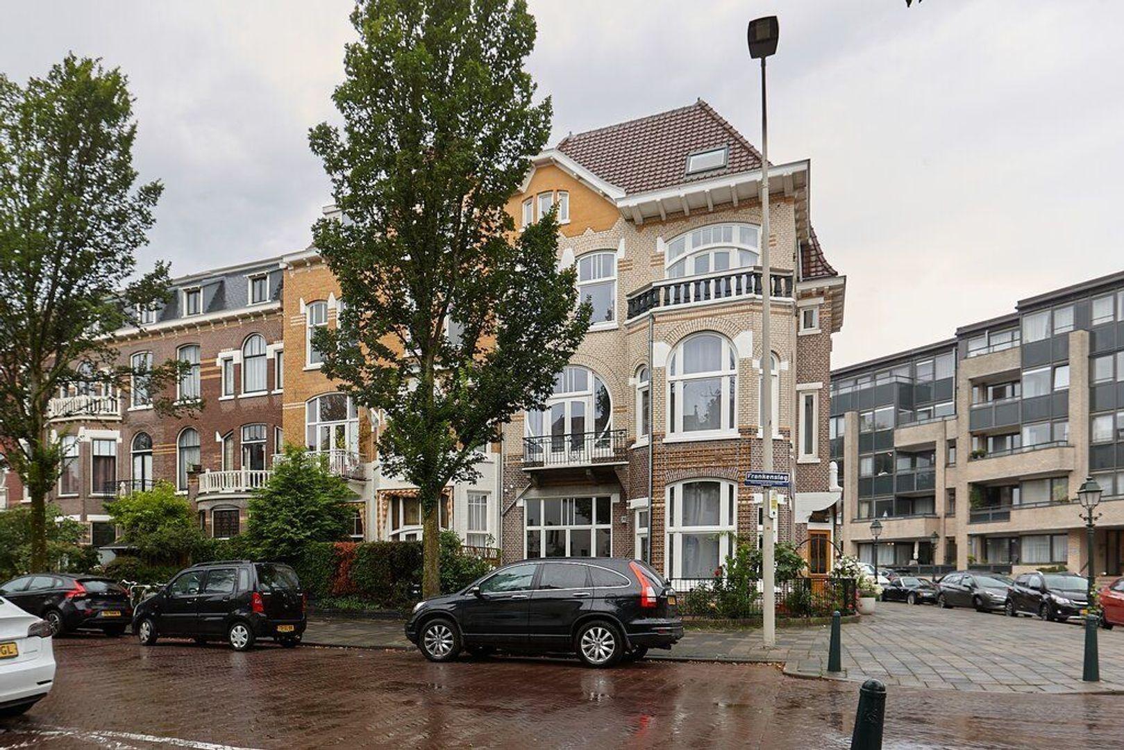 Frankenslag, Den Haag foto-19 blur