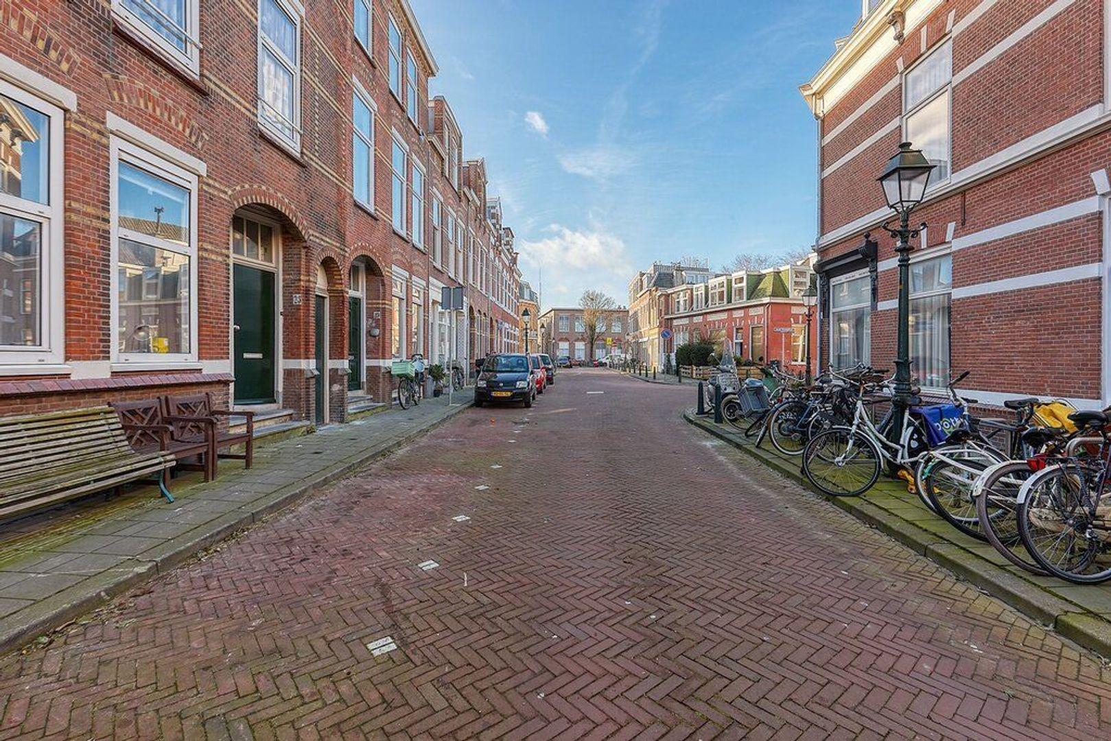 Willem Beukelszoonstraat, Den Haag foto-37 blur