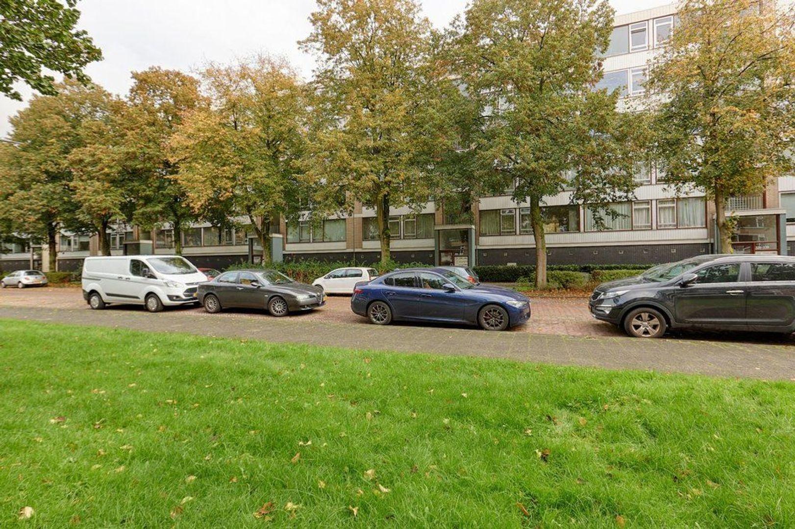 Burgemeester Caan van Necklaan, Leidschendam foto-22 blur