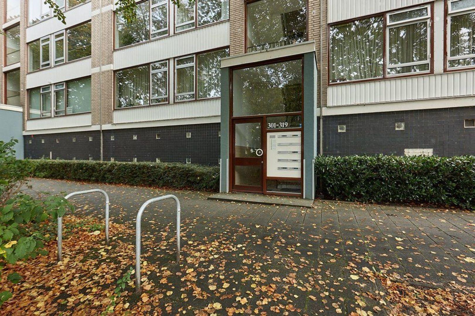 Burgemeester Caan van Necklaan, Leidschendam foto-23 blur