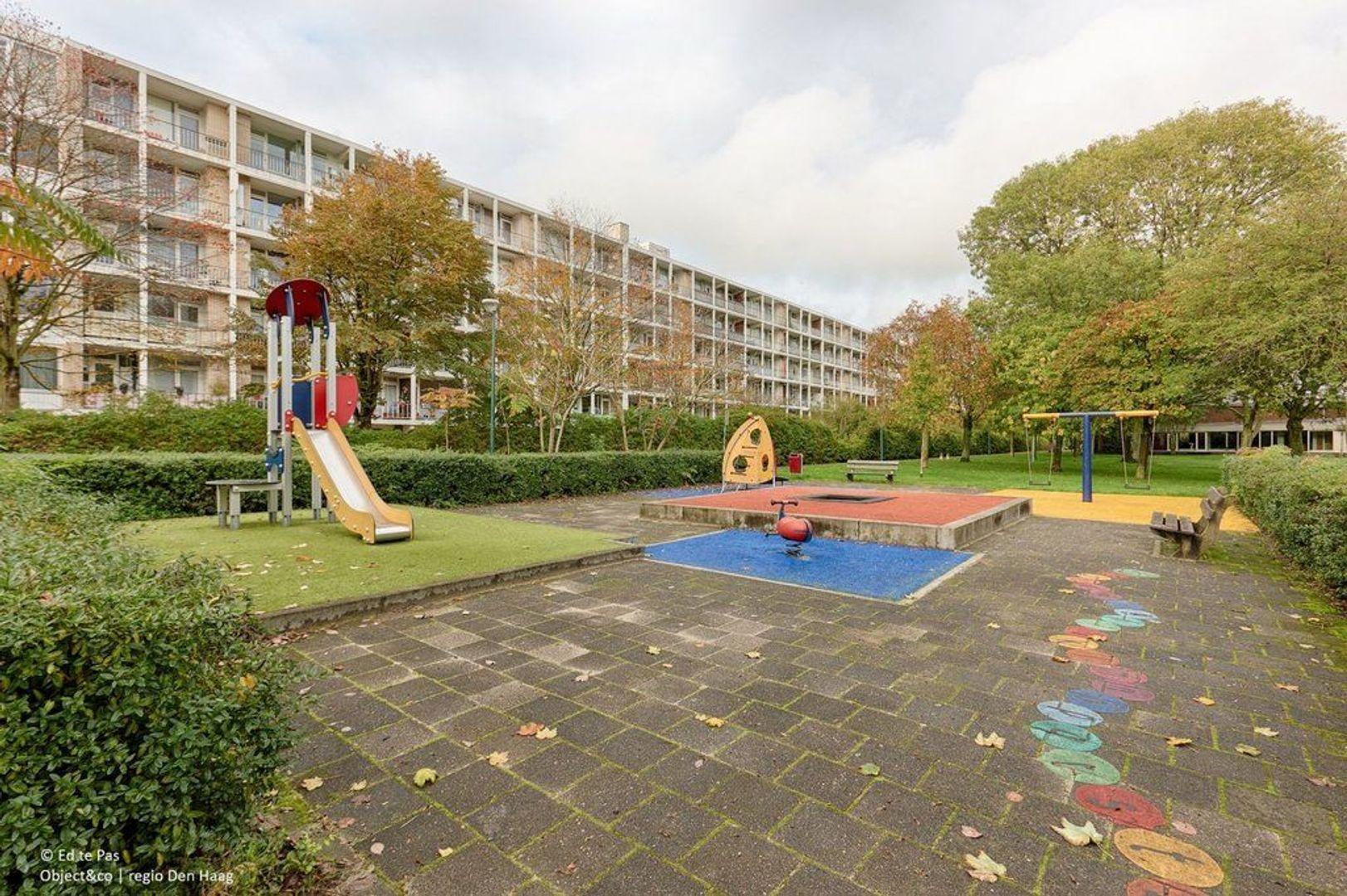 Burgemeester Caan van Necklaan, Leidschendam foto-25 blur