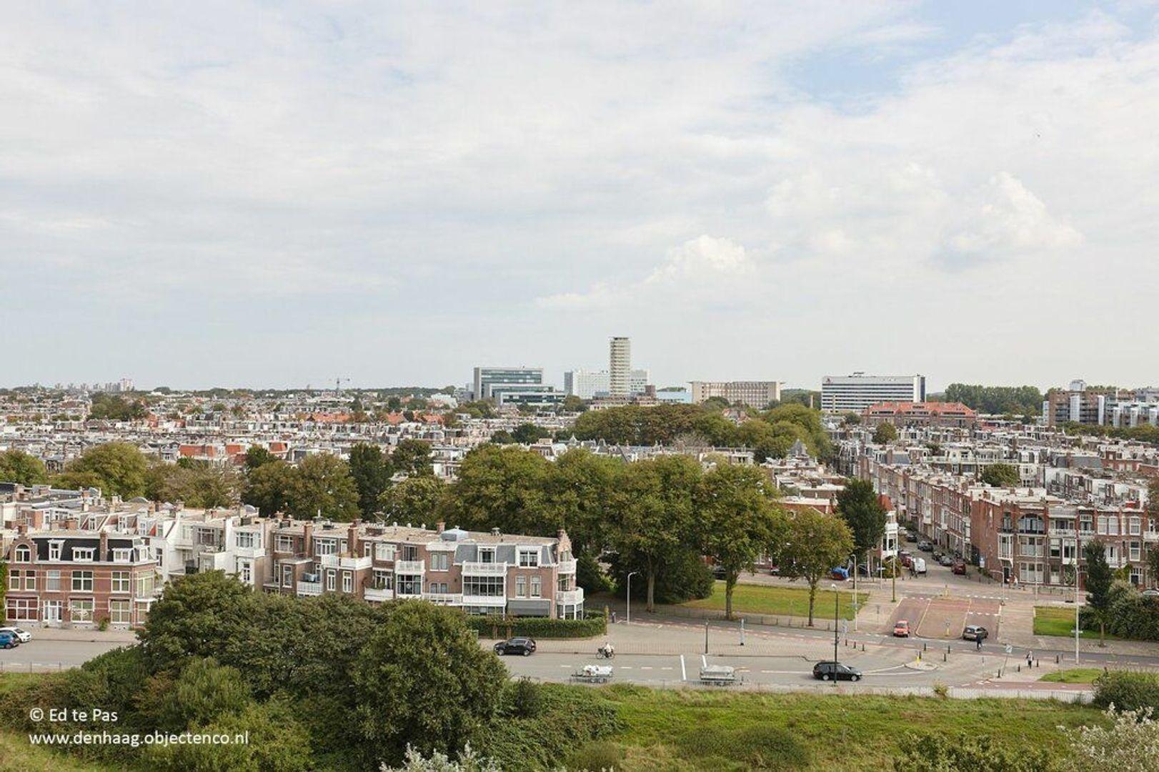 Van Boetzelaerlaan, Den Haag foto-32 blur