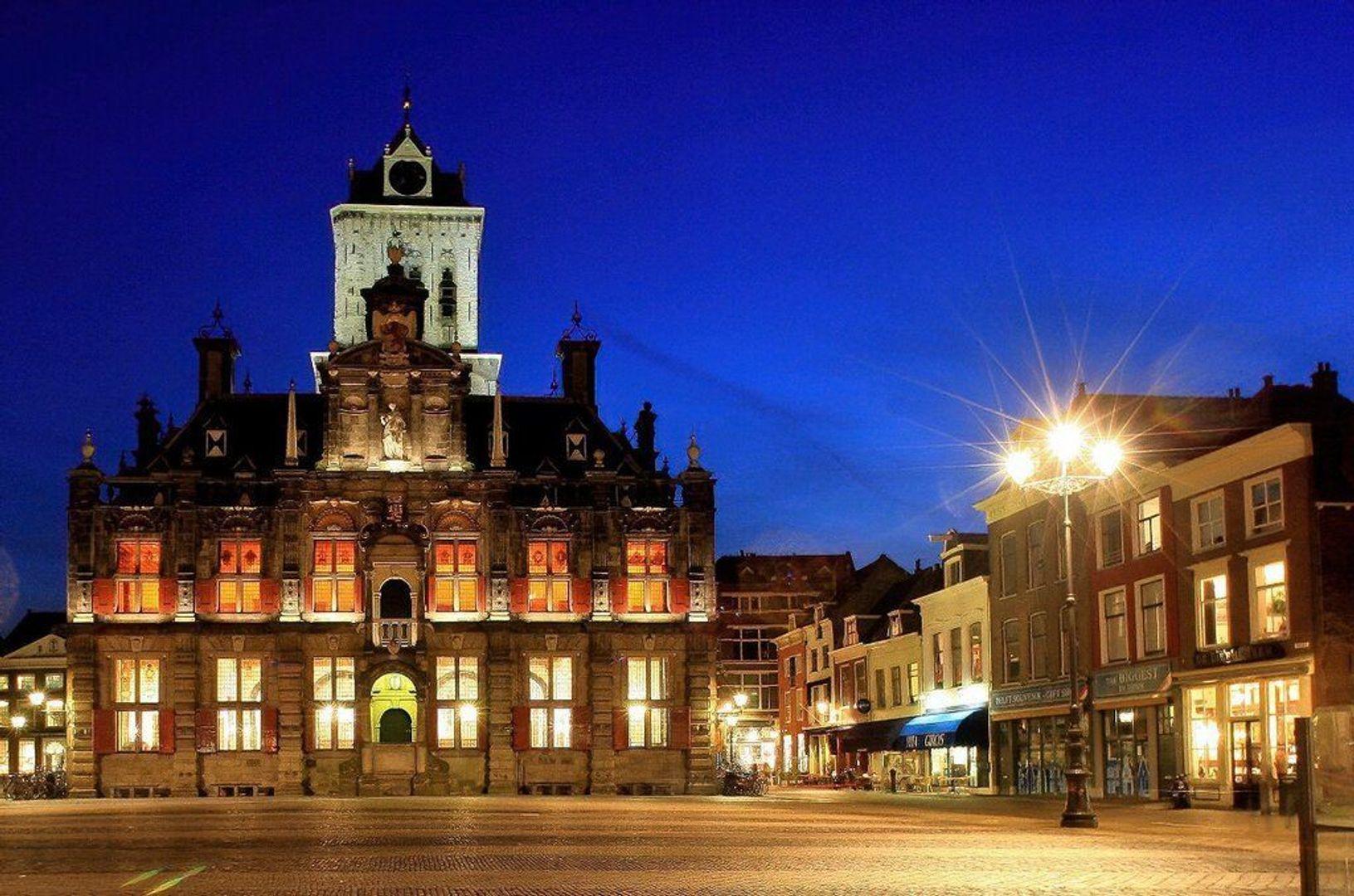 Pluympot, Delft foto-33 blur