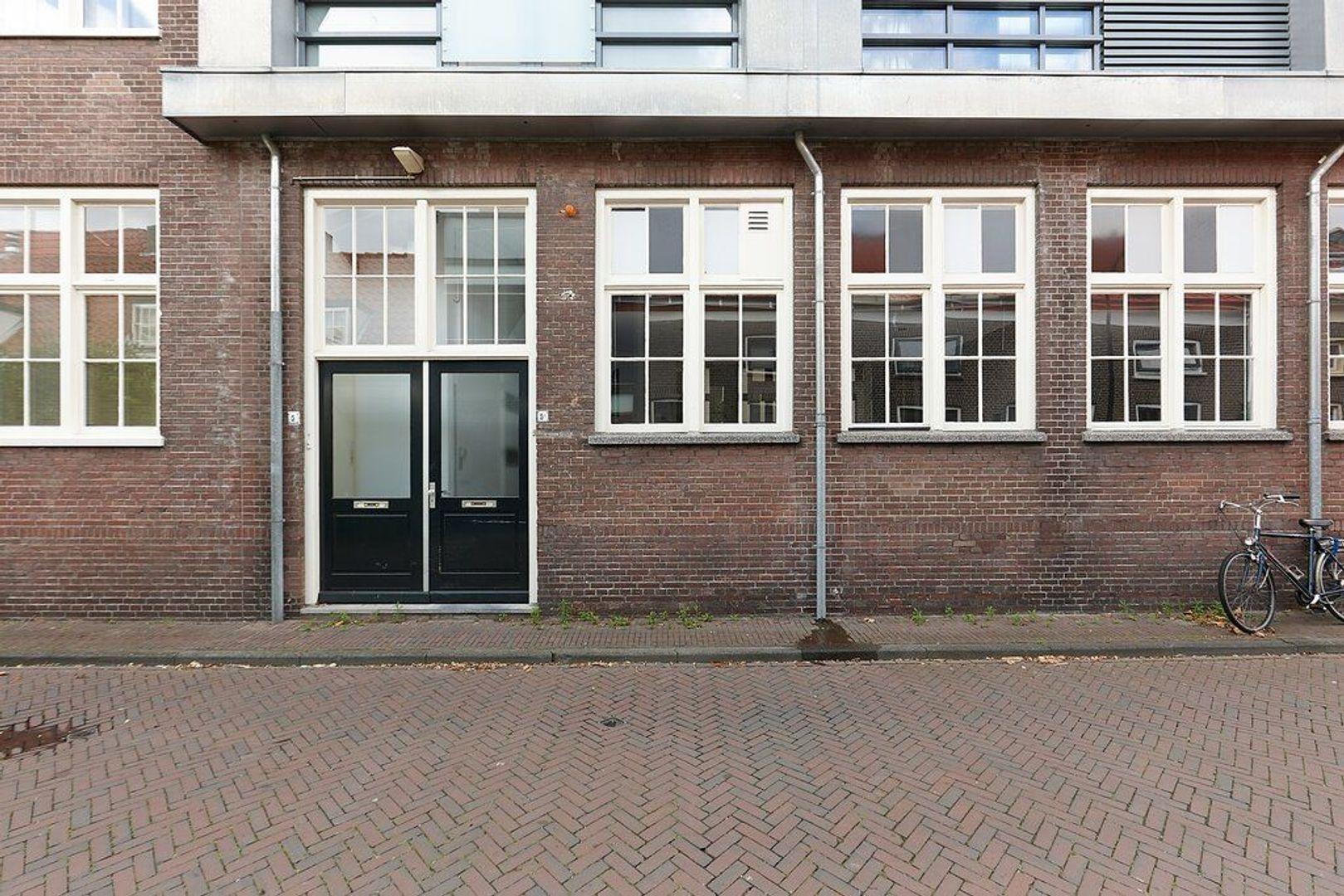 Pluympot, Delft foto-25 blur