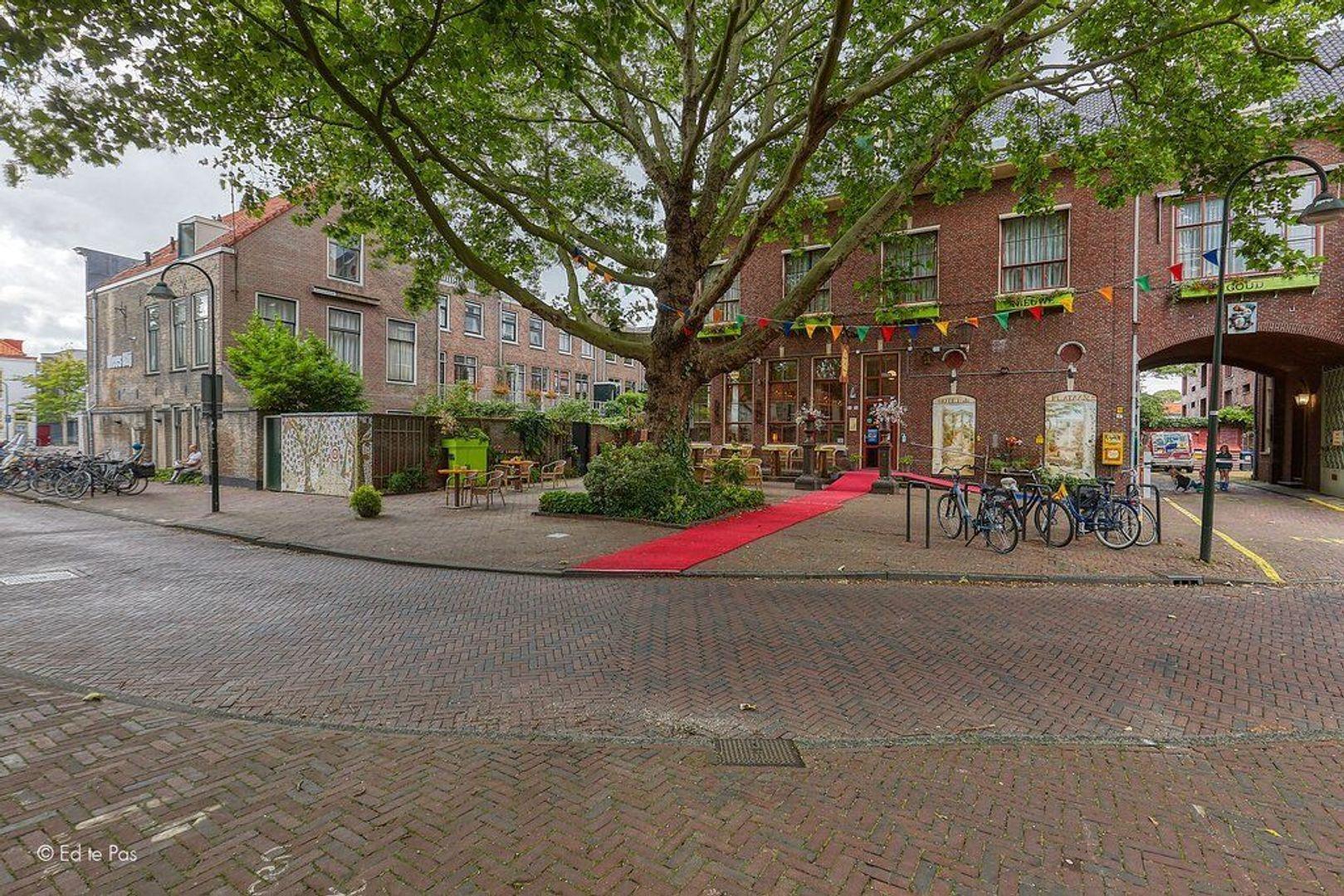 Pluympot, Delft foto-28 blur