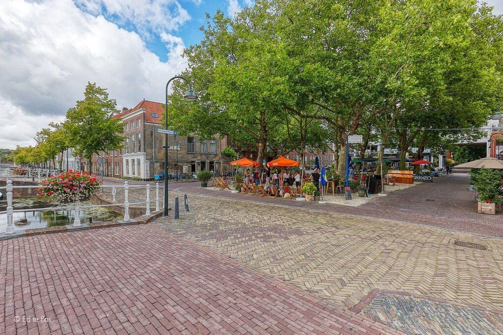 Pluympot, Delft foto-32 blur