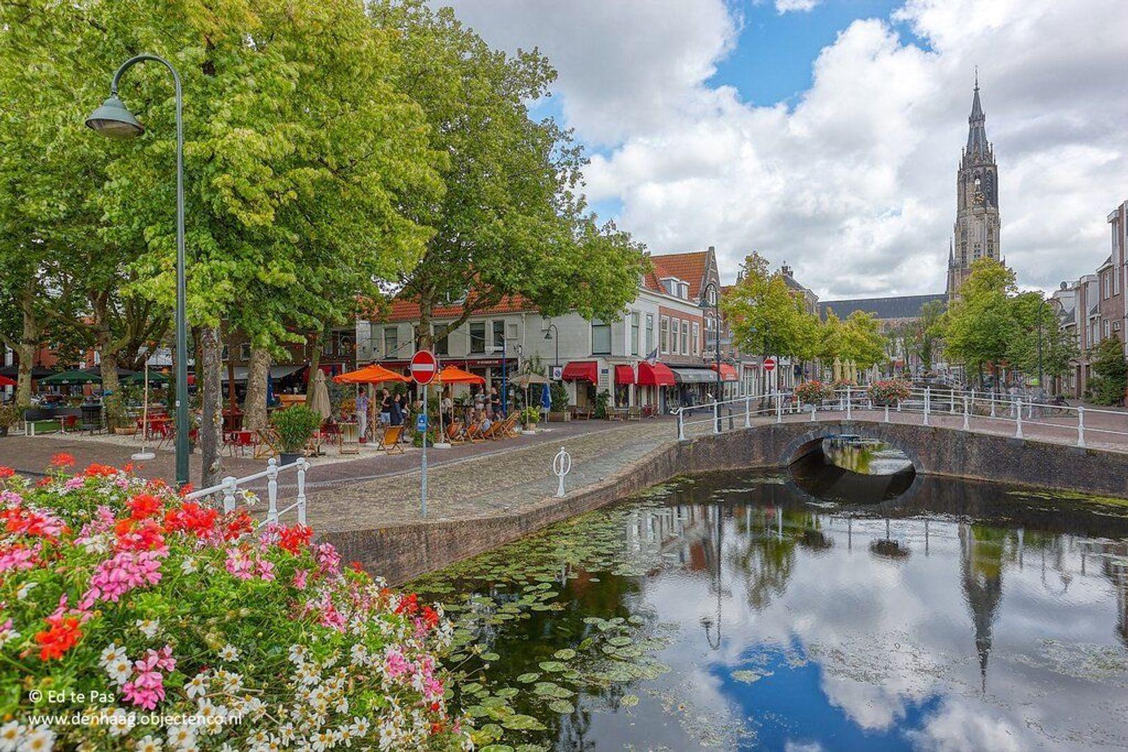 Pluympot, Delft foto-2 blur