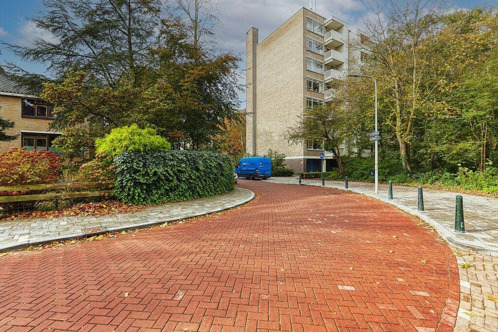 Suzannaland, Den Haag foto-25 blur