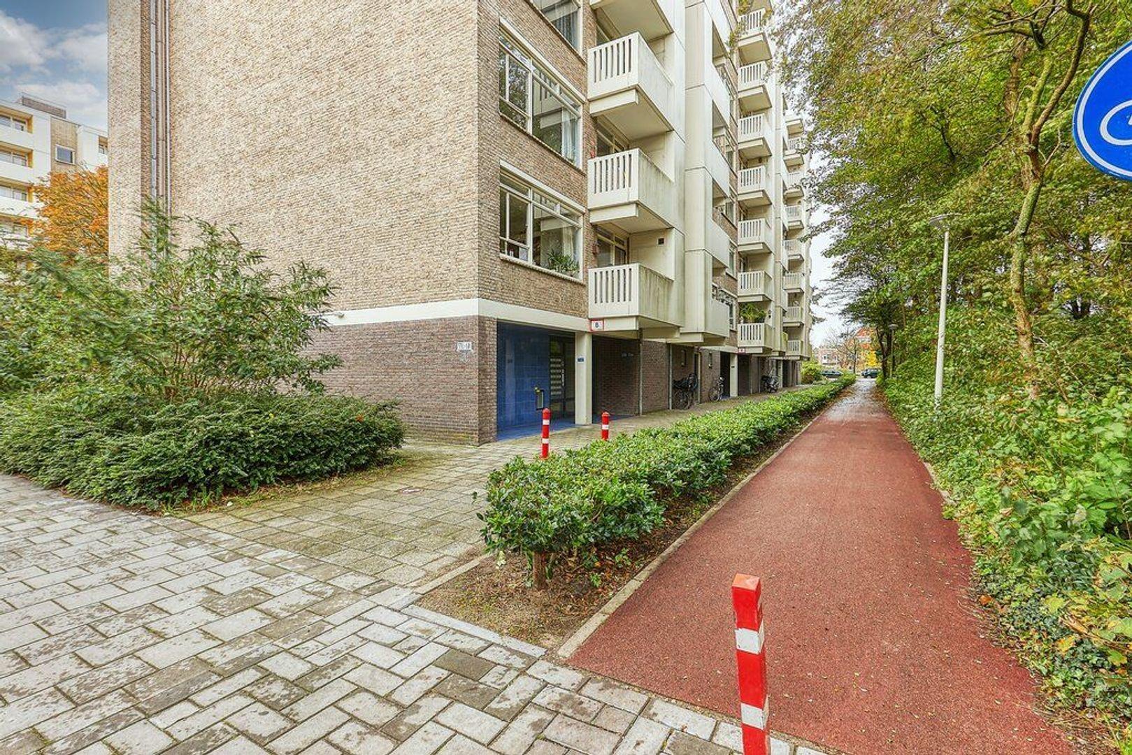 Suzannaland, Den Haag foto-26 blur