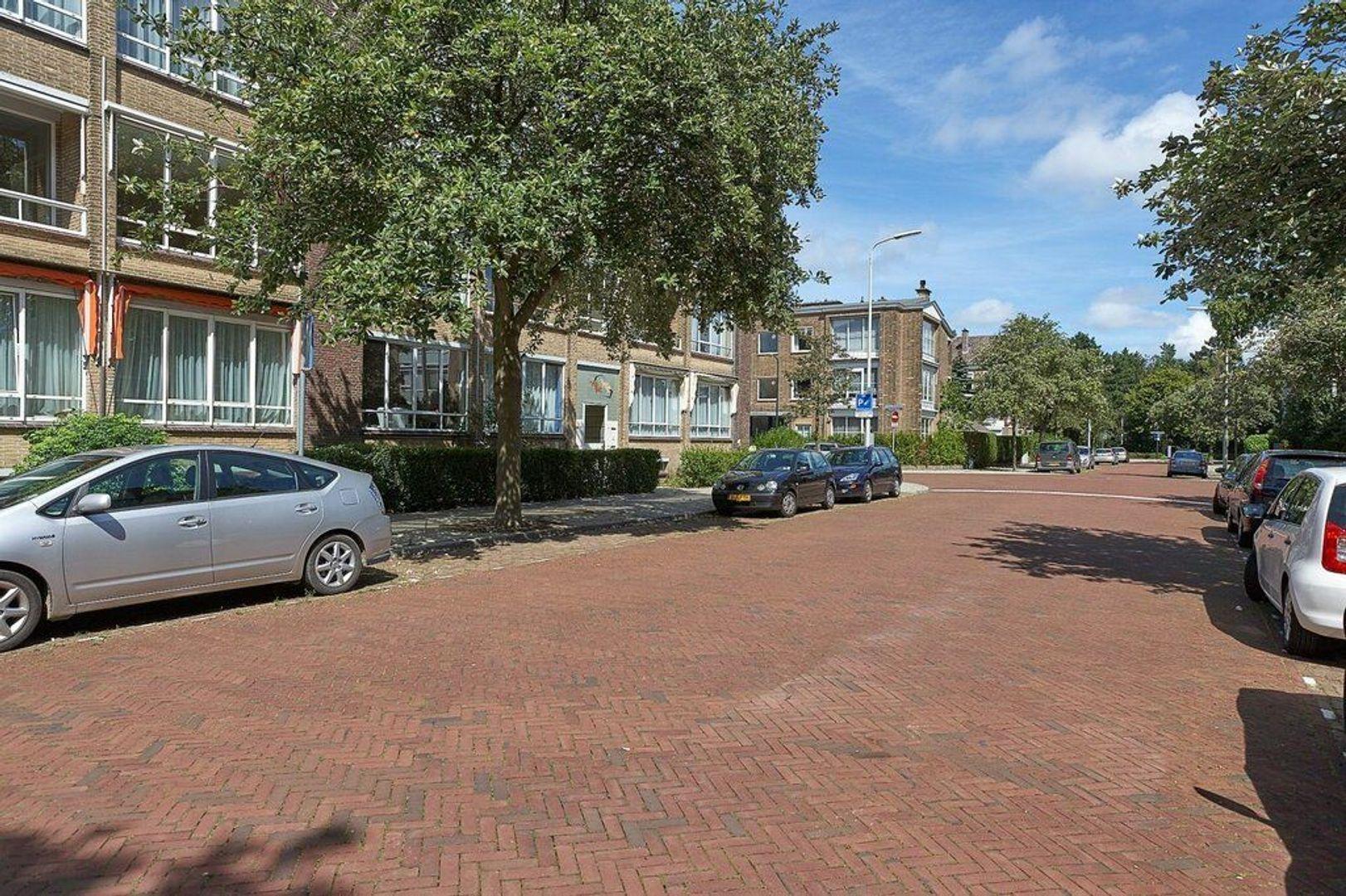 Breitnerlaan, Den Haag foto-21 blur