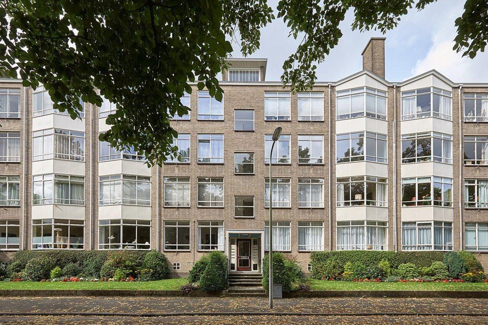 Laan van Clingendael, Den Haag foto-2 blur