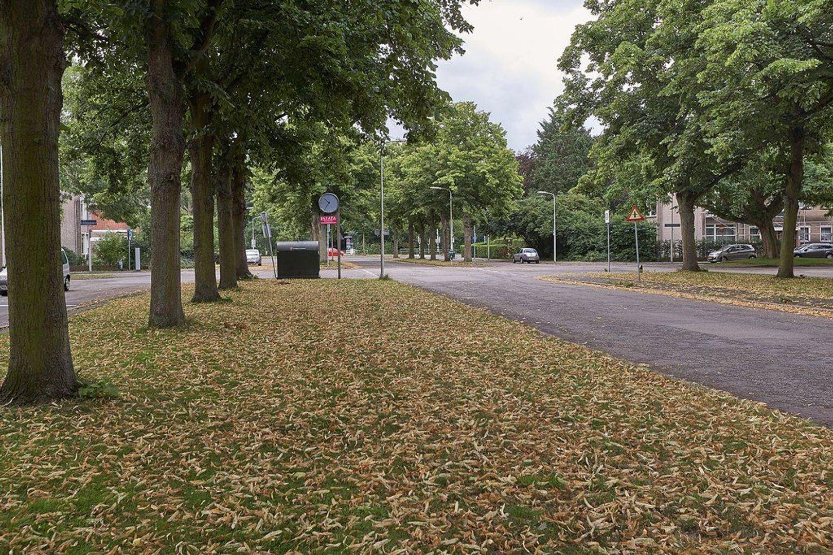 Laan van Clingendael, Den Haag foto-22 blur