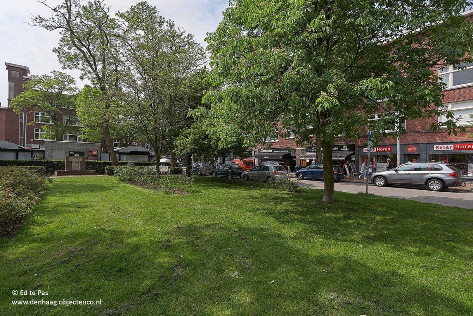 Laan van Clingendael, Den Haag foto-23 blur