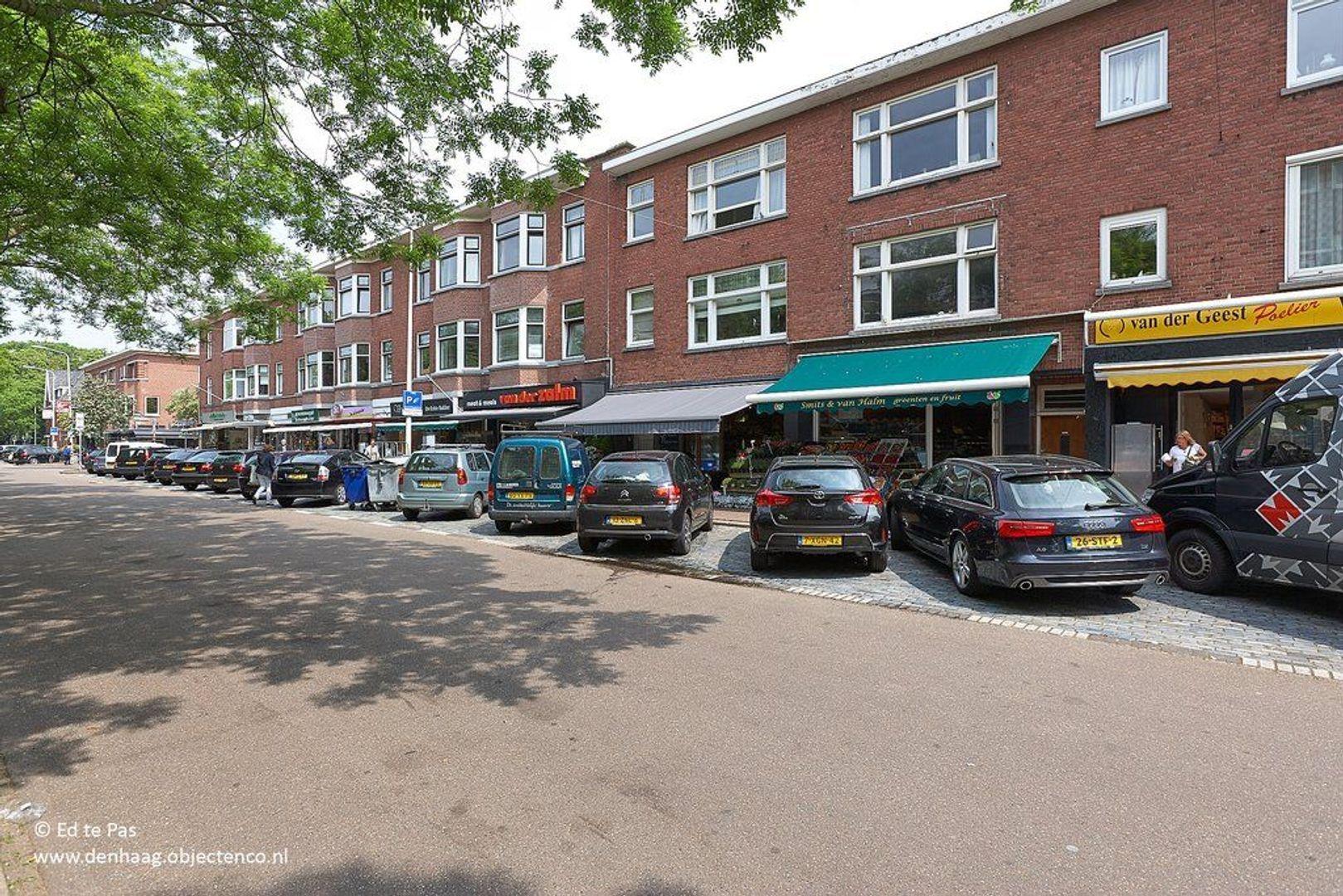 Laan van Clingendael, Den Haag foto-24 blur