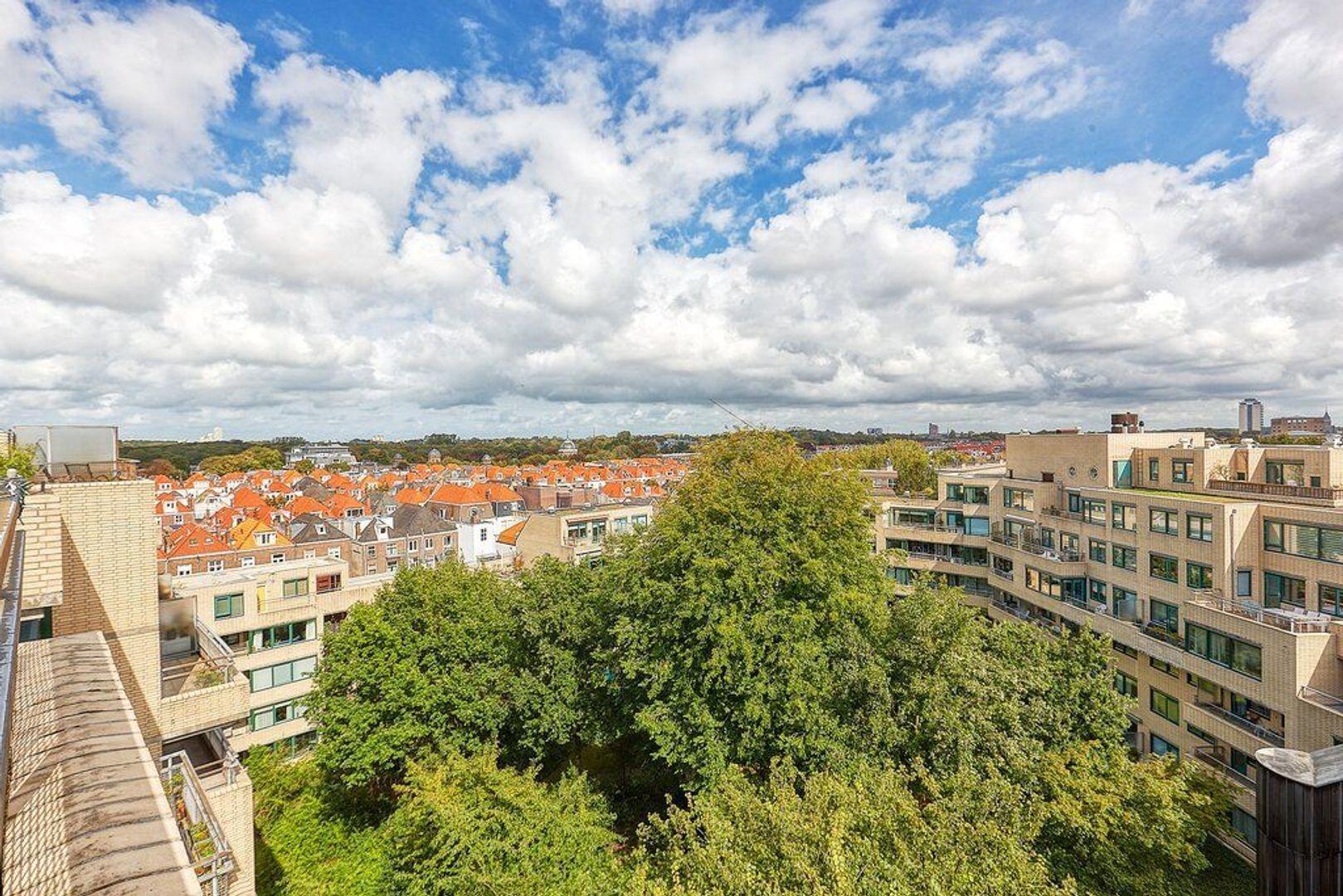 Burgemeester Patijnlaan, Den Haag foto-10 blur