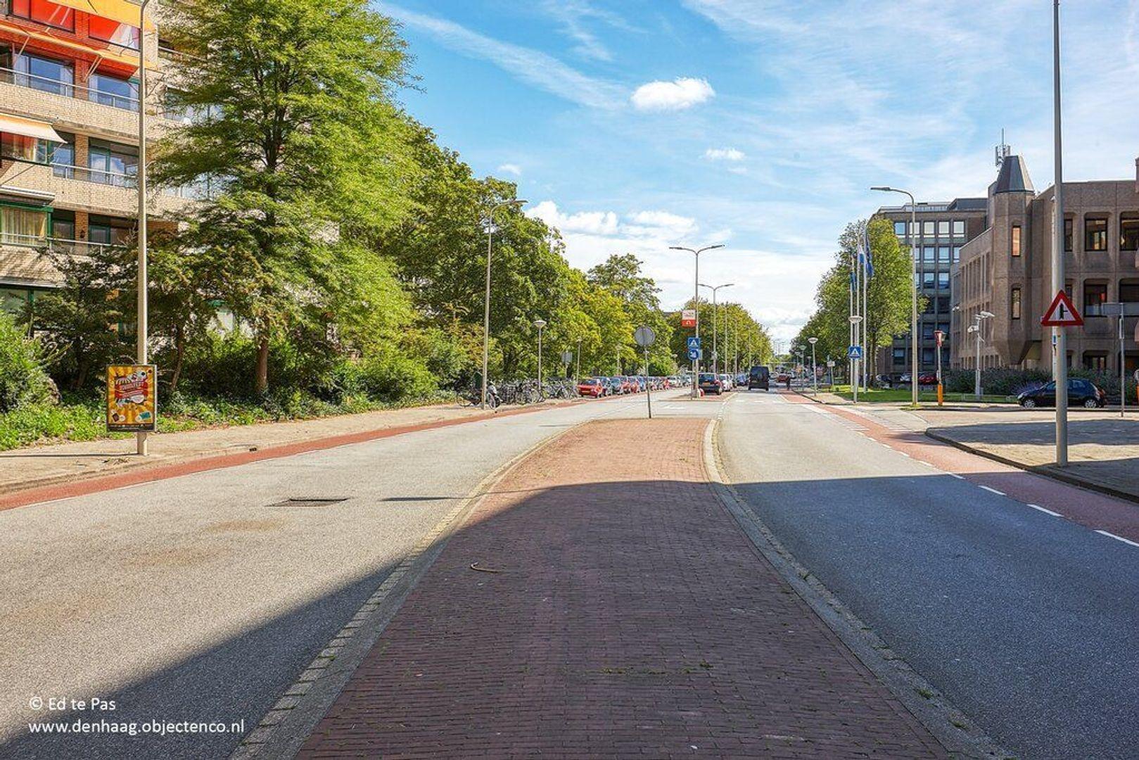 Burgemeester Patijnlaan, Den Haag foto-28 blur