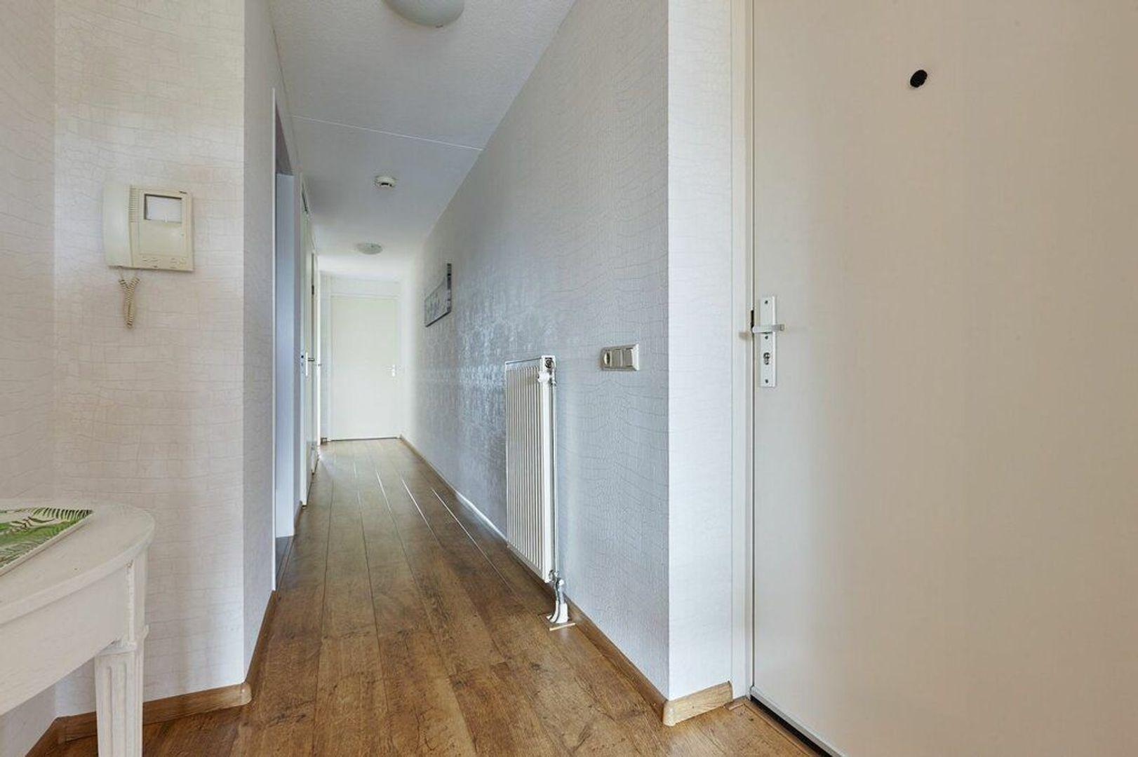 Spinozalaan, Voorburg foto-10 blur