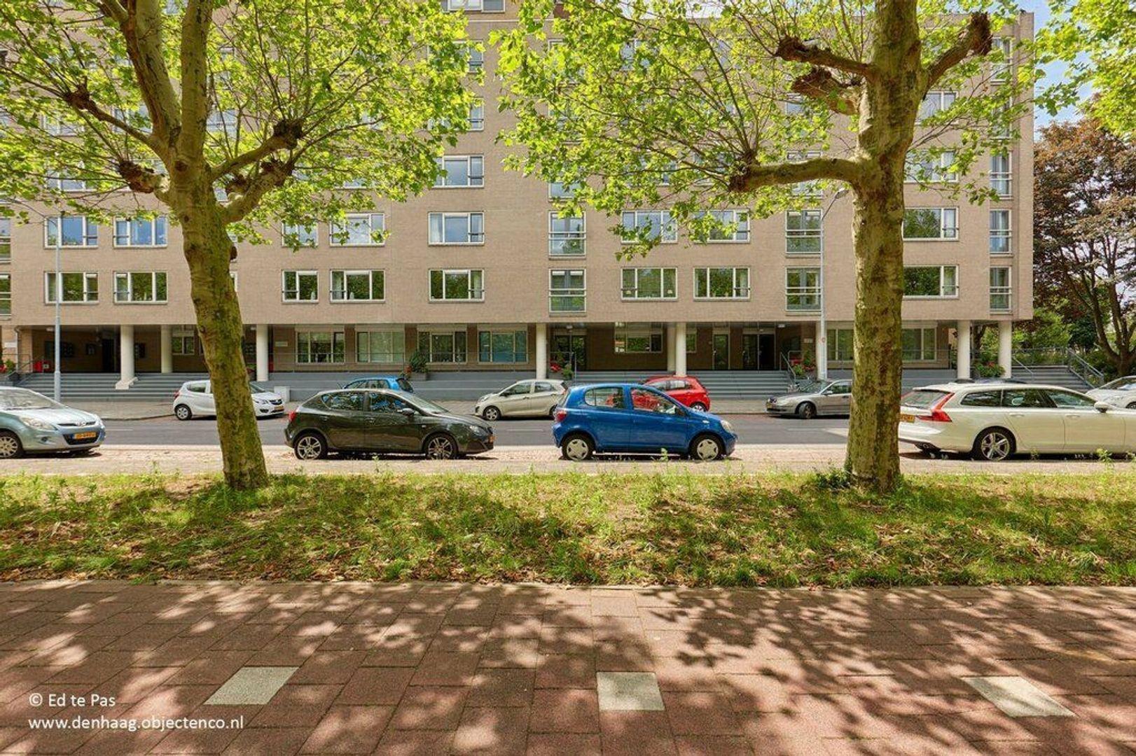 Spinozalaan, Voorburg foto-25 blur