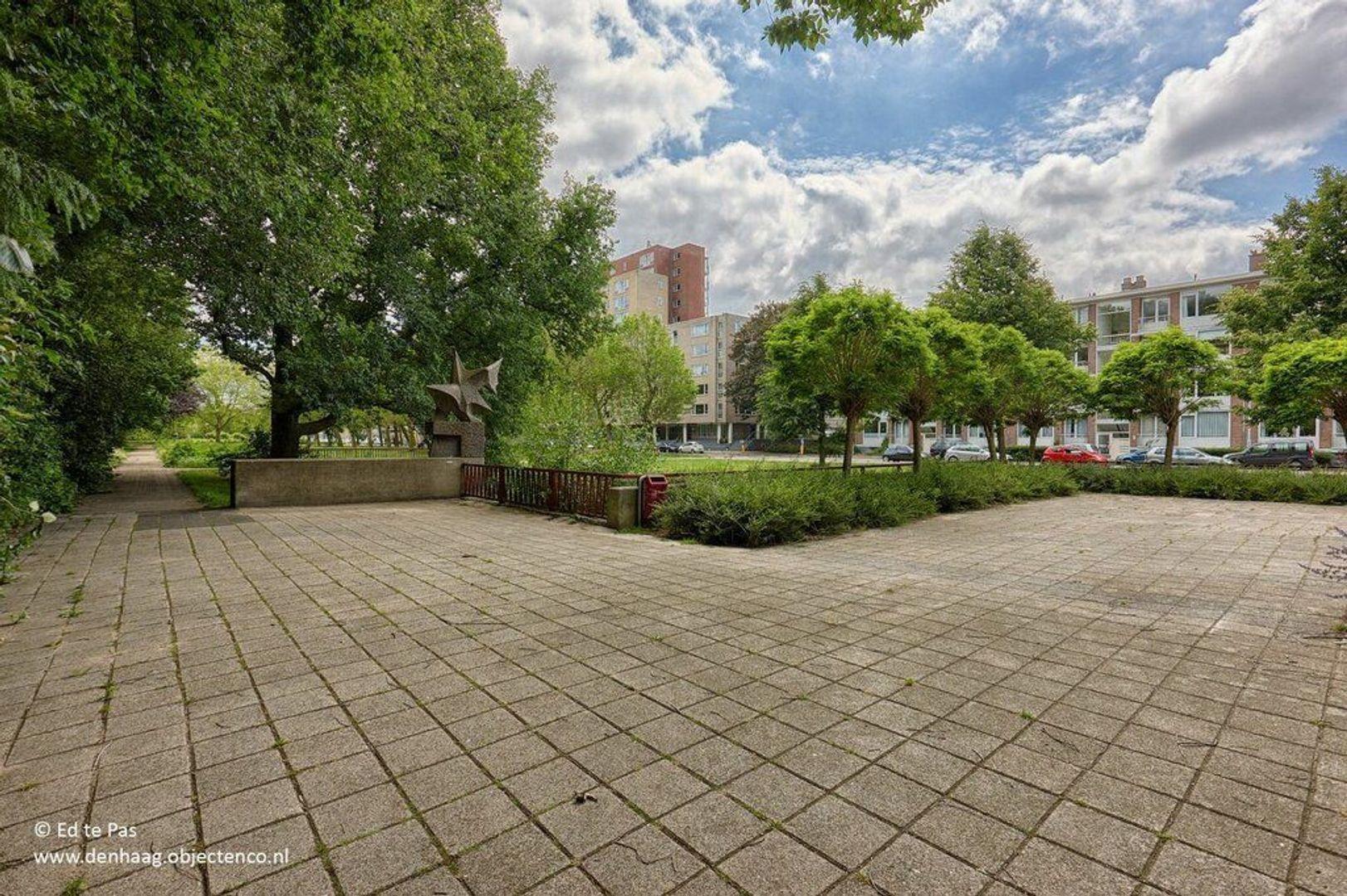 Spinozalaan, Voorburg foto-29 blur