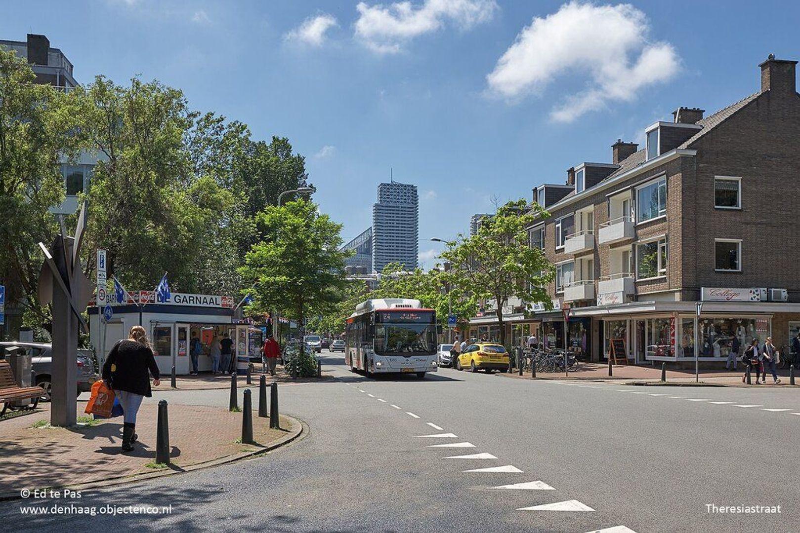 Abraham Patrasstraat, Den Haag foto-28 blur