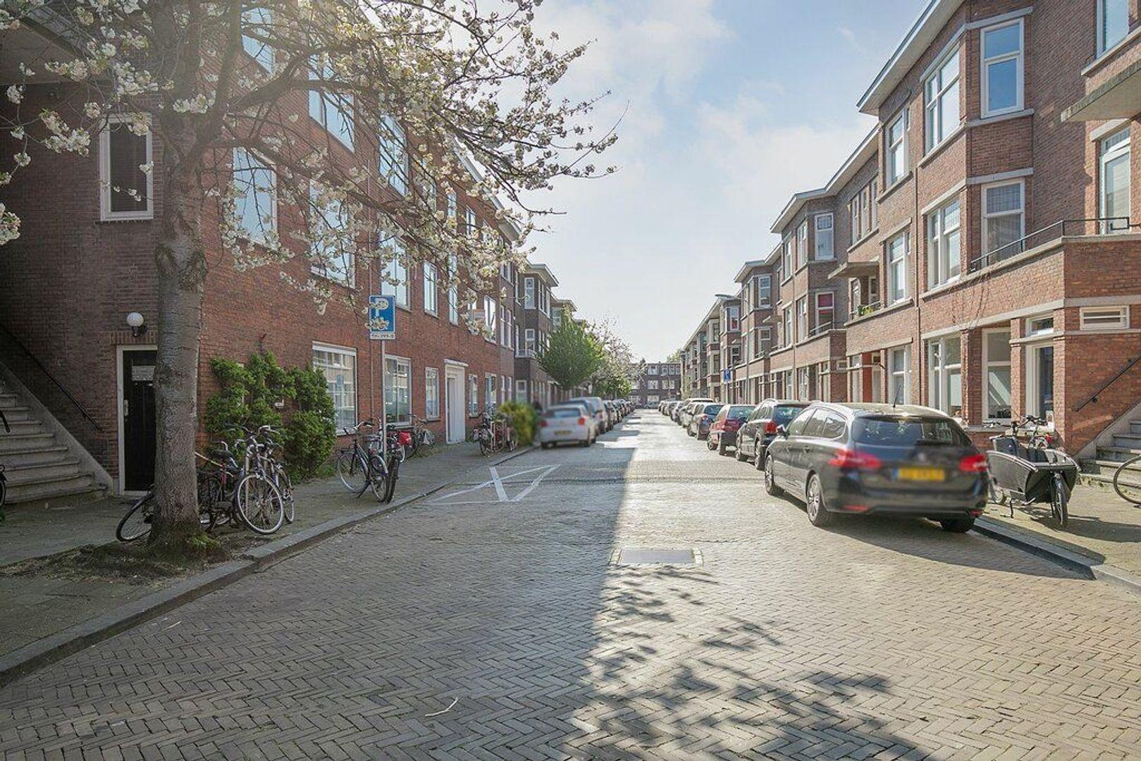 De Moucheronstraat, Den Haag foto-31 blur