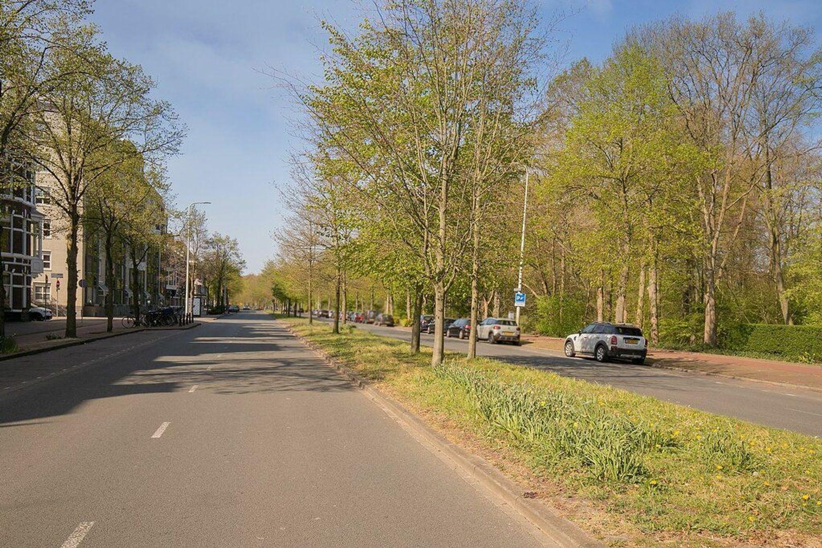 De Moucheronstraat, Den Haag foto-32 blur