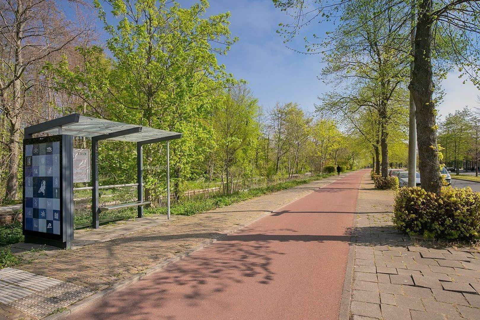 De Moucheronstraat, Den Haag foto-33 blur