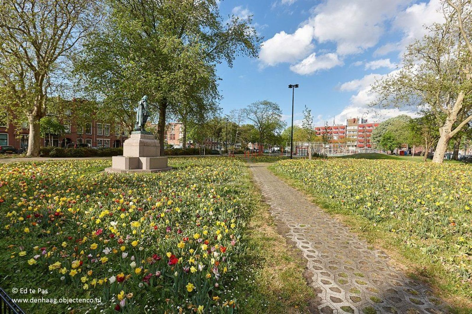 Valkenboslaan, Den Haag foto-20 blur