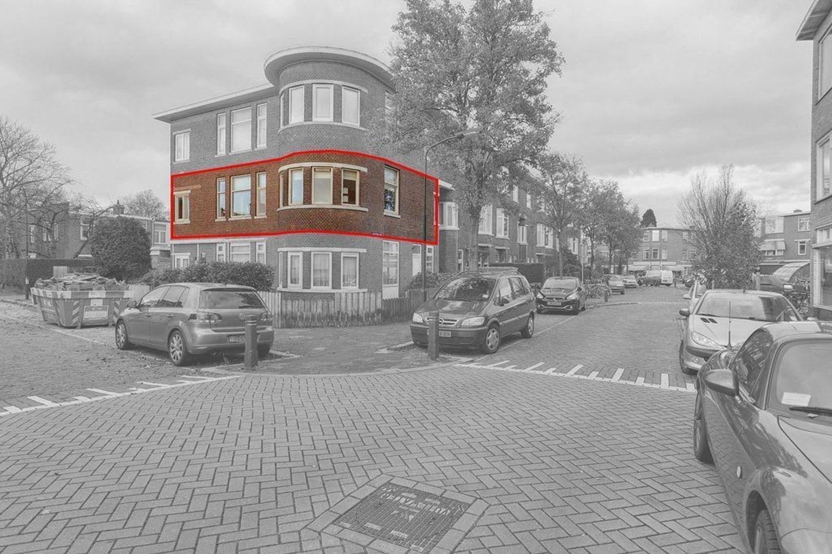van Halewijnlaan, Voorburg foto-23 blur
