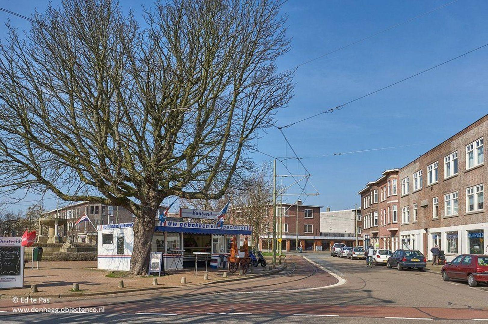 Van Reesstraat, Den Haag foto-25 blur