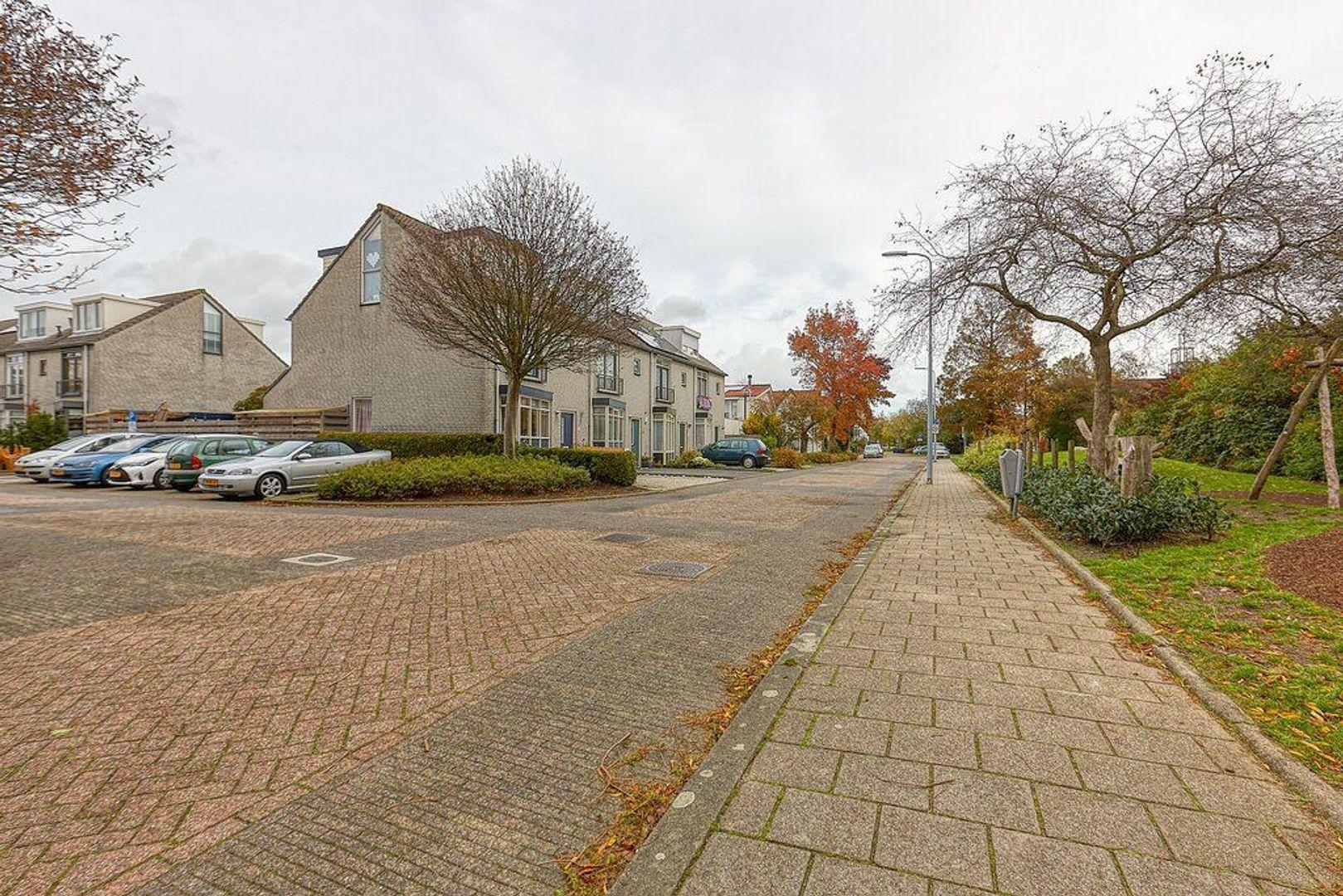 Hendrik van Randwijkstraat, Leidschendam foto-30 blur