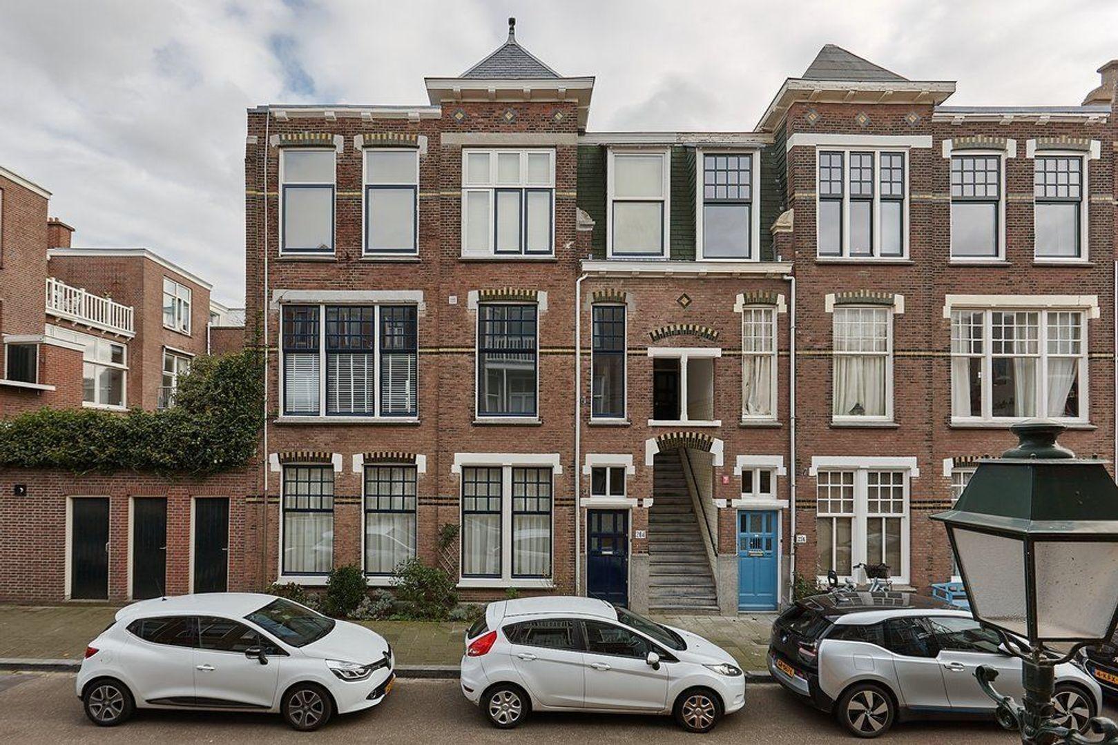 Van Aerssenstraat, Den Haag foto-28 blur