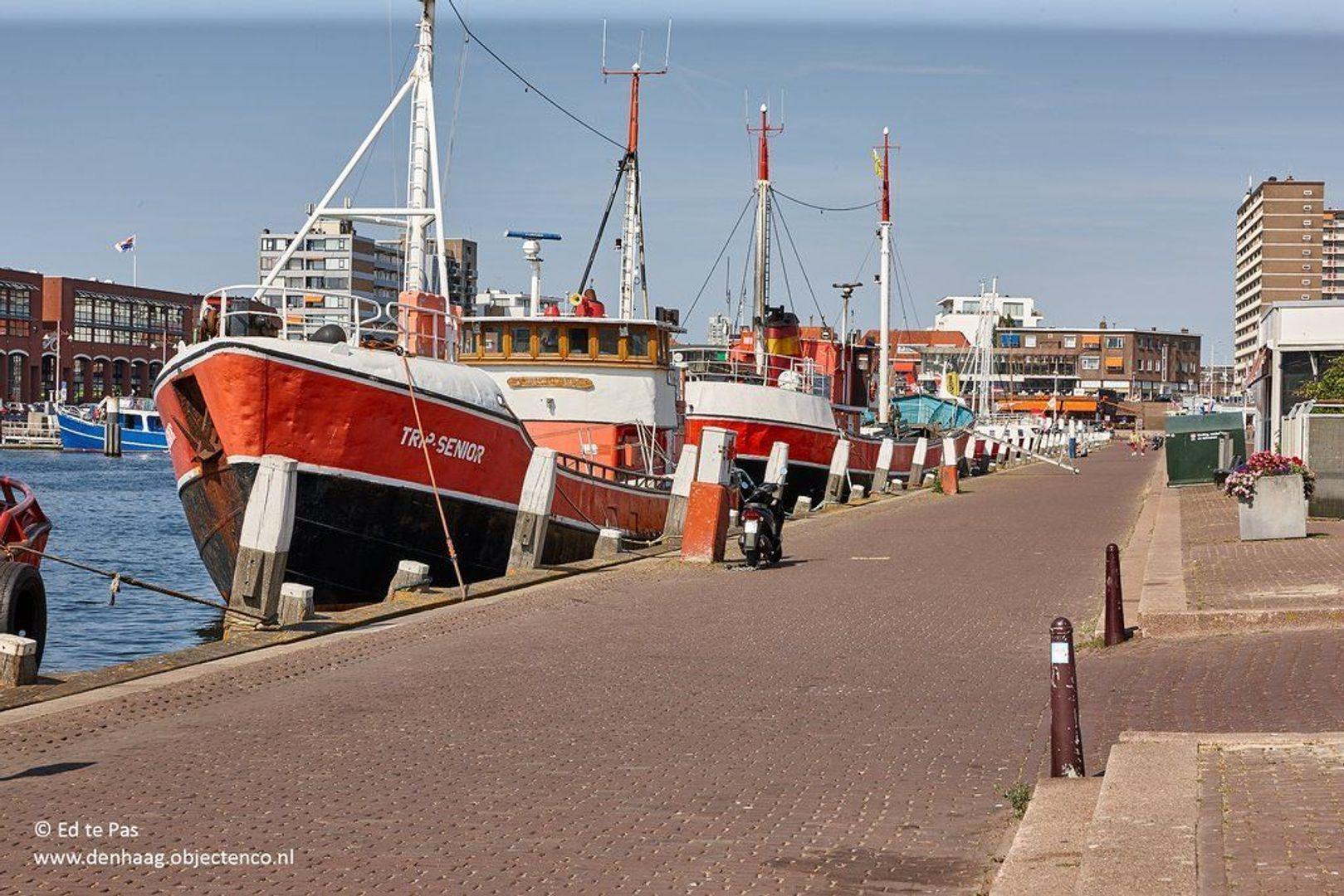 Van Aerssenstraat, Den Haag foto-33 blur
