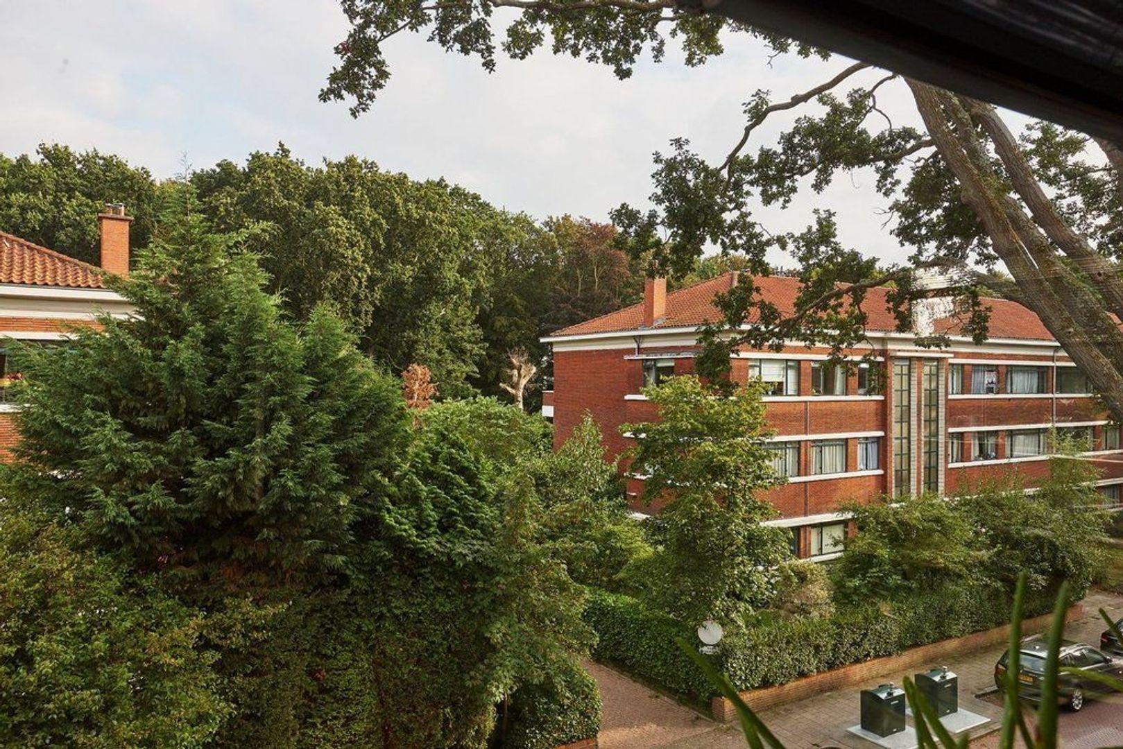 Van Kijfhoeklaan, Den Haag foto-27 blur