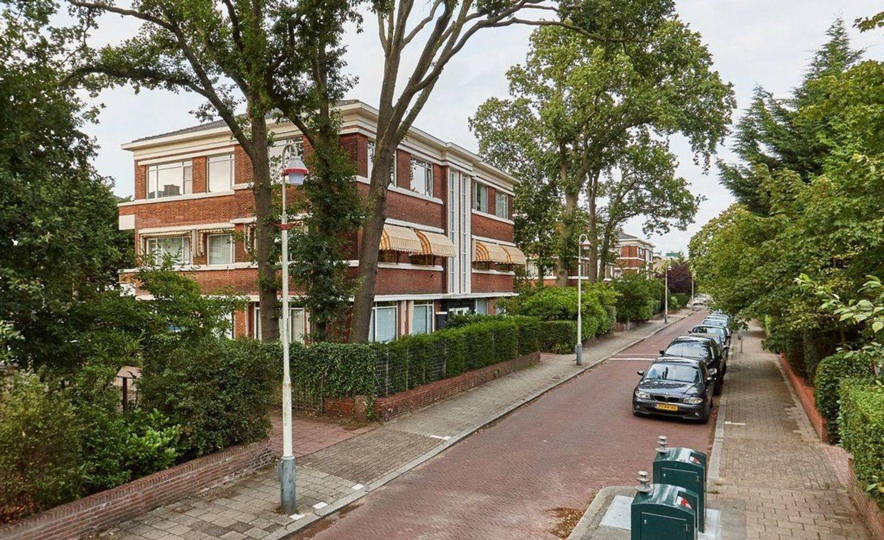 Van Kijfhoeklaan, Den Haag foto-28 blur