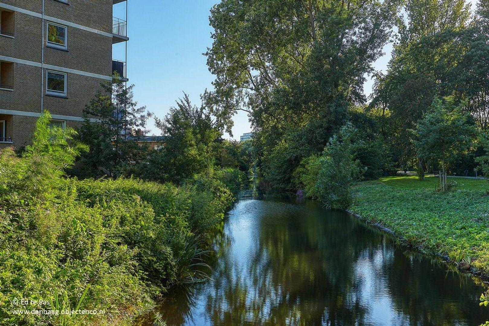 Hongarenburg, Den Haag foto-29 blur