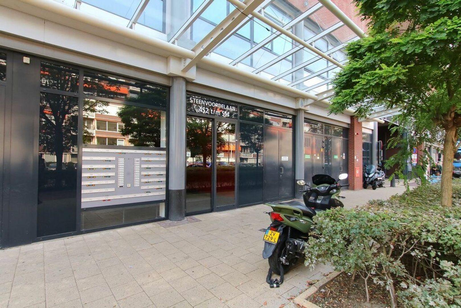 Steenvoordelaan, Rijswijk foto-20 blur