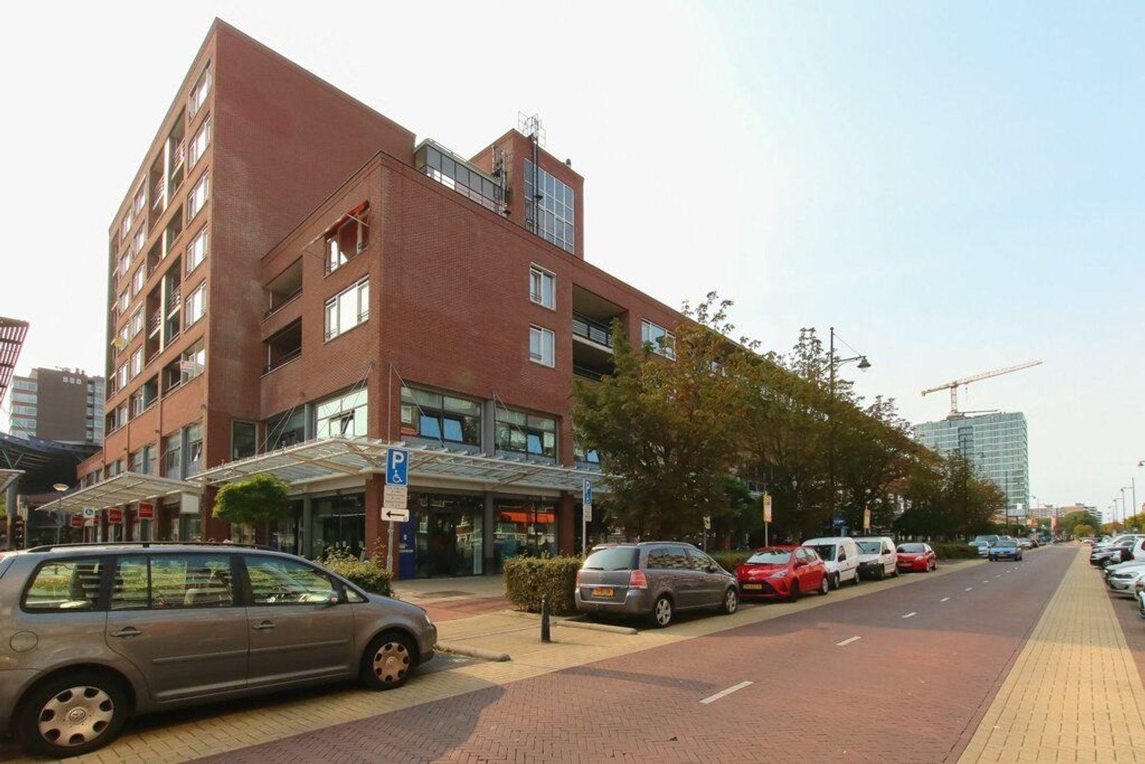 Steenvoordelaan, Rijswijk foto-21 blur