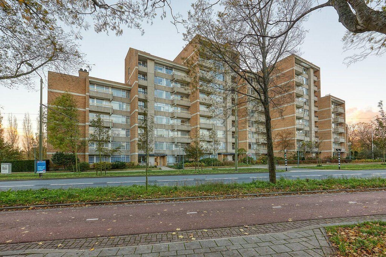 Nieuwe Parklaan, Den Haag foto-0 blur