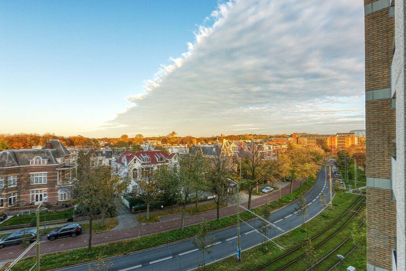 Nieuwe Parklaan, Den Haag foto-22 blur
