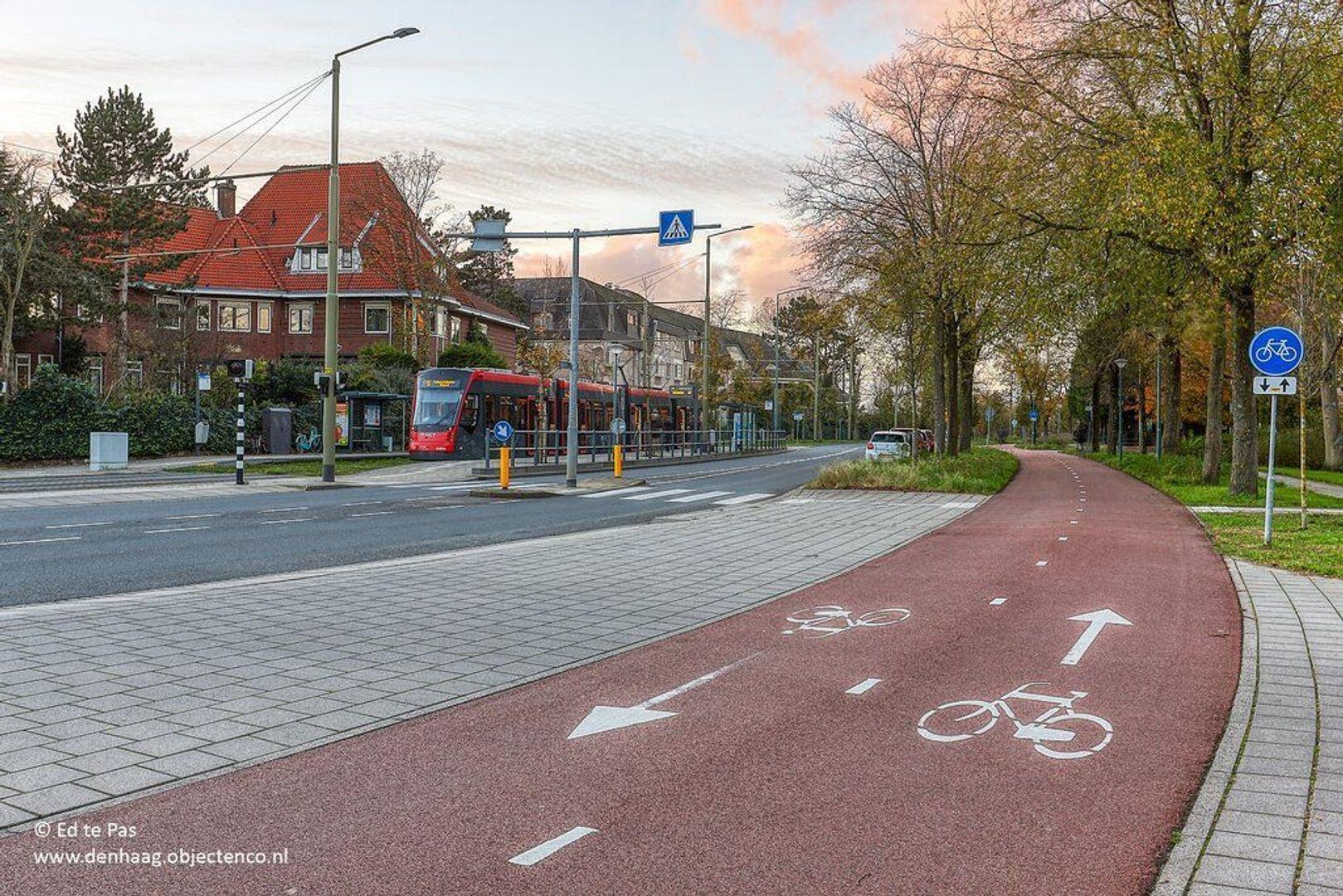 Nieuwe Parklaan, Den Haag foto-40 blur
