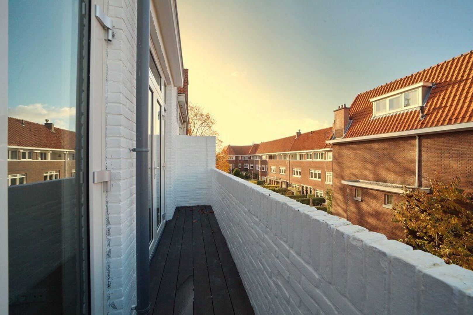 Breitnerlaan, Den Haag foto-28 blur