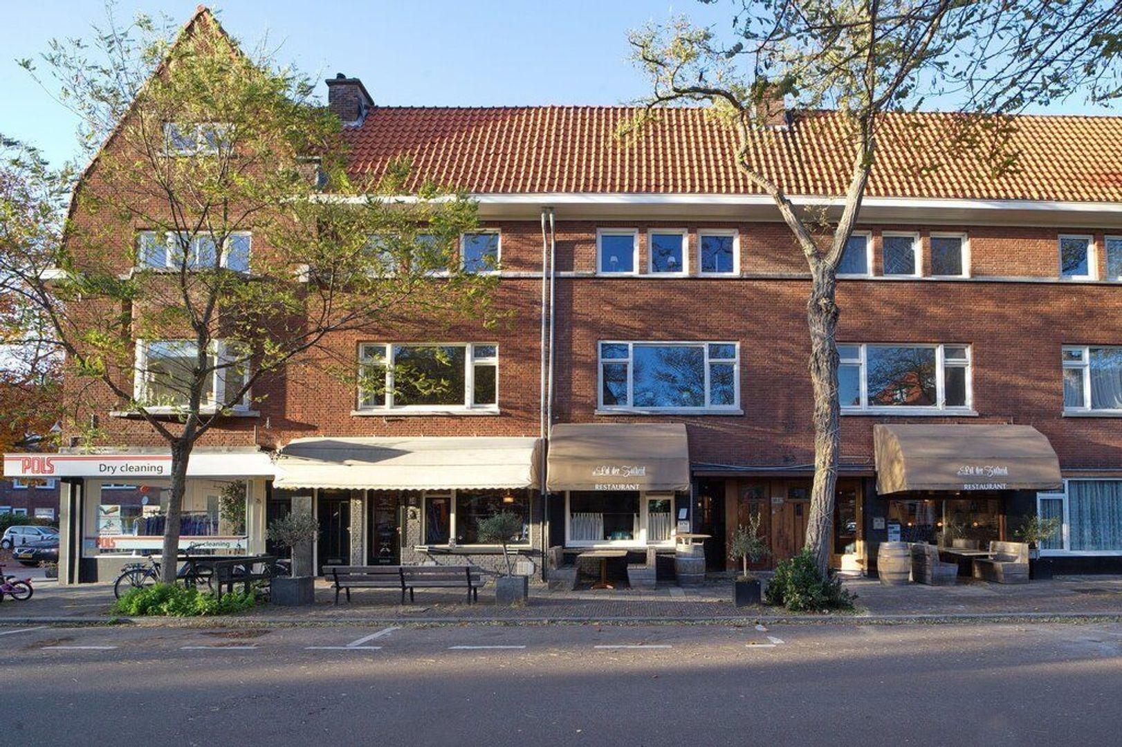 Breitnerlaan, Den Haag foto-62 blur