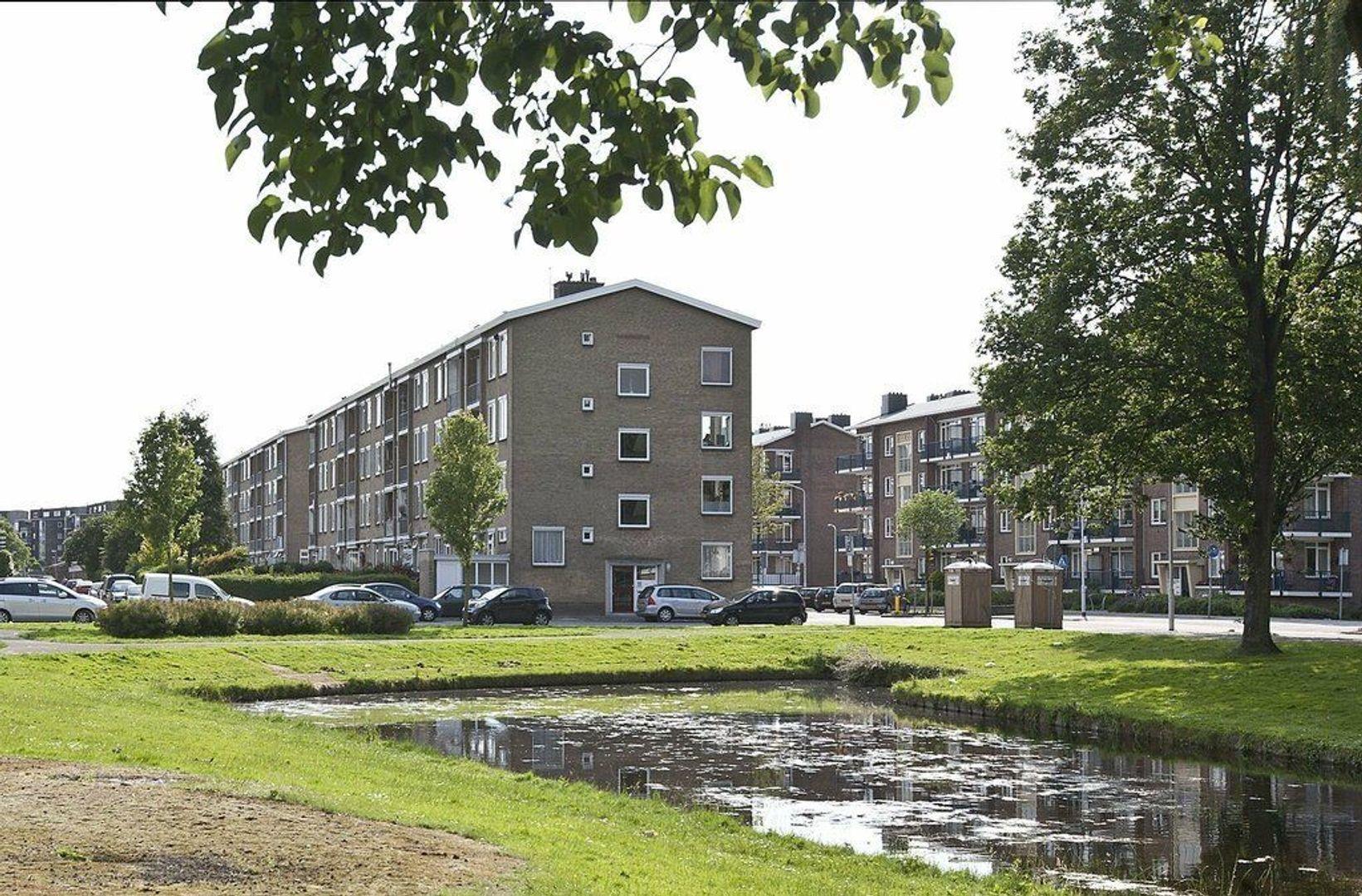 Bruijnings Ingenhoeslaan, Voorburg foto-14 blur