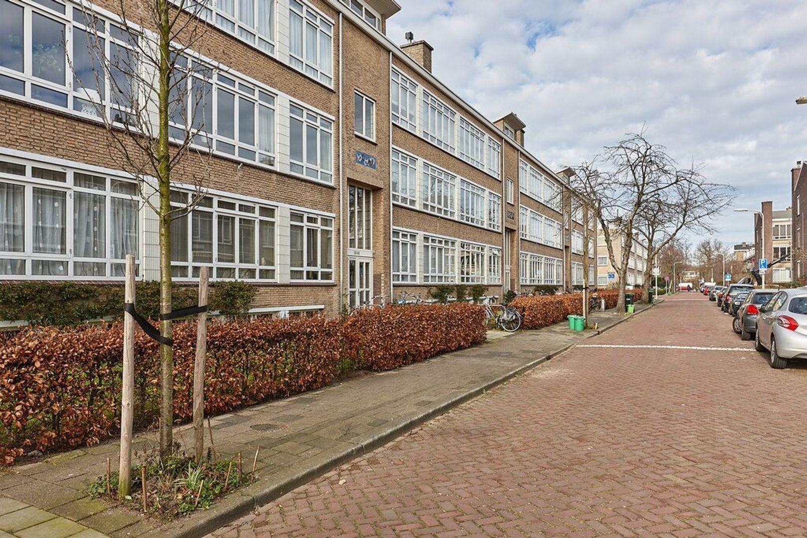 Van Trigtstraat, Den Haag foto-22 blur
