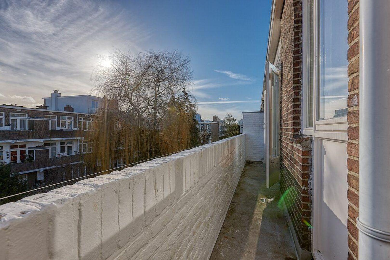 Theresiastraat, Den Haag foto-10 blur