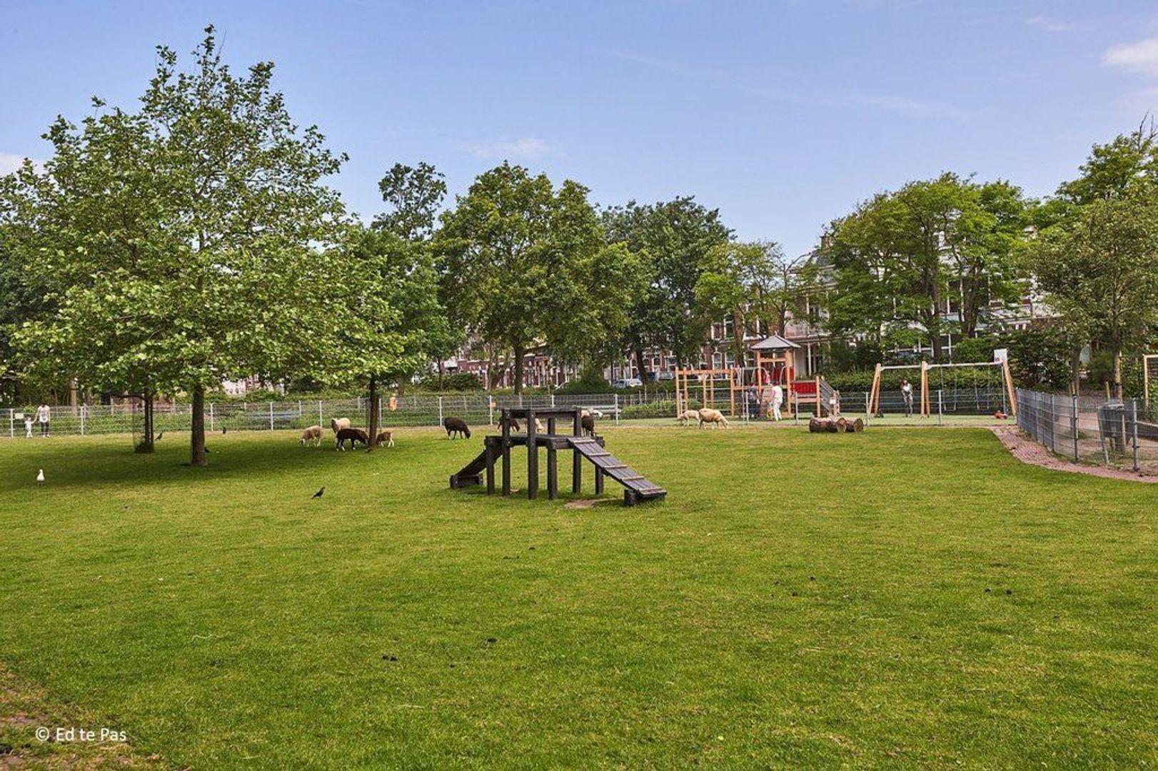 IJmuidenstraat, Den Haag foto-20 blur